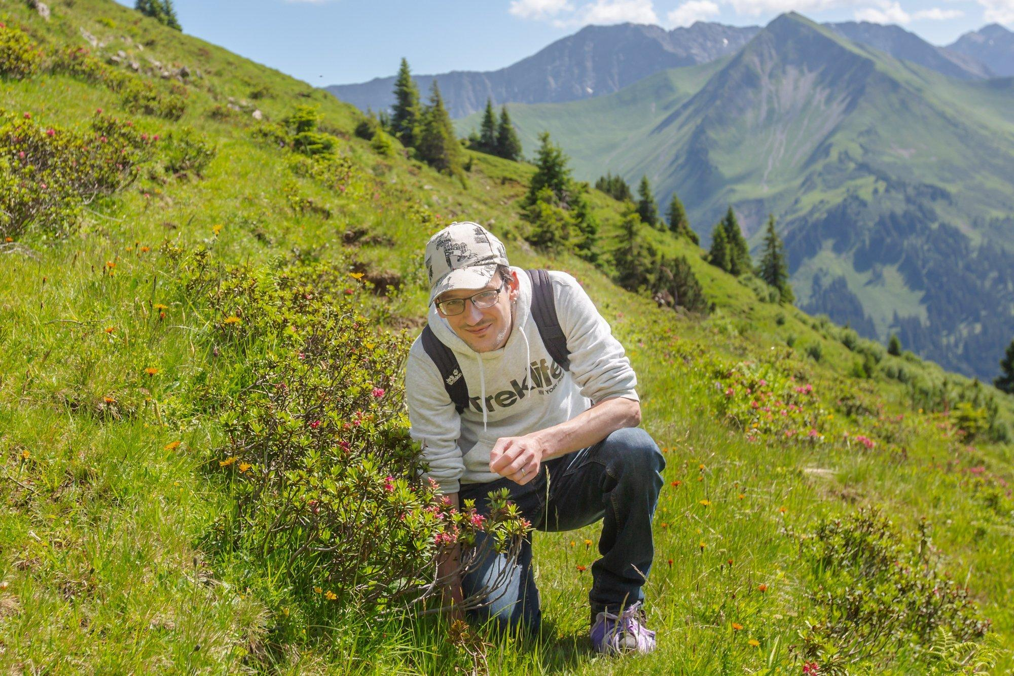 Der Wissenschaftler David Eichenberg bei einer Gebirgswanderung. Er kniet an der Baumgrenze vor einer Alpenrose.