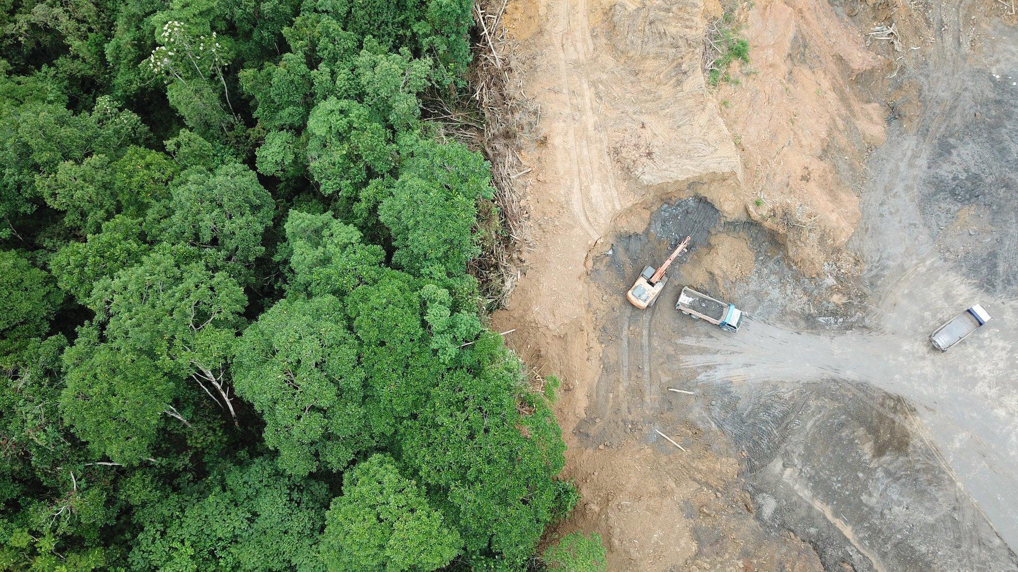 Es handelt sich um ein Luftbild, das auf der linken Seite intakten tropischen Regenwald und auf der rechten Seite eine leere Fläche mit Baggern und Lastwagen zeigt. Dargestellt wird Waldzerstörung in Malaysia, um Platz für Ölpalmenplantagen zu schaffen.