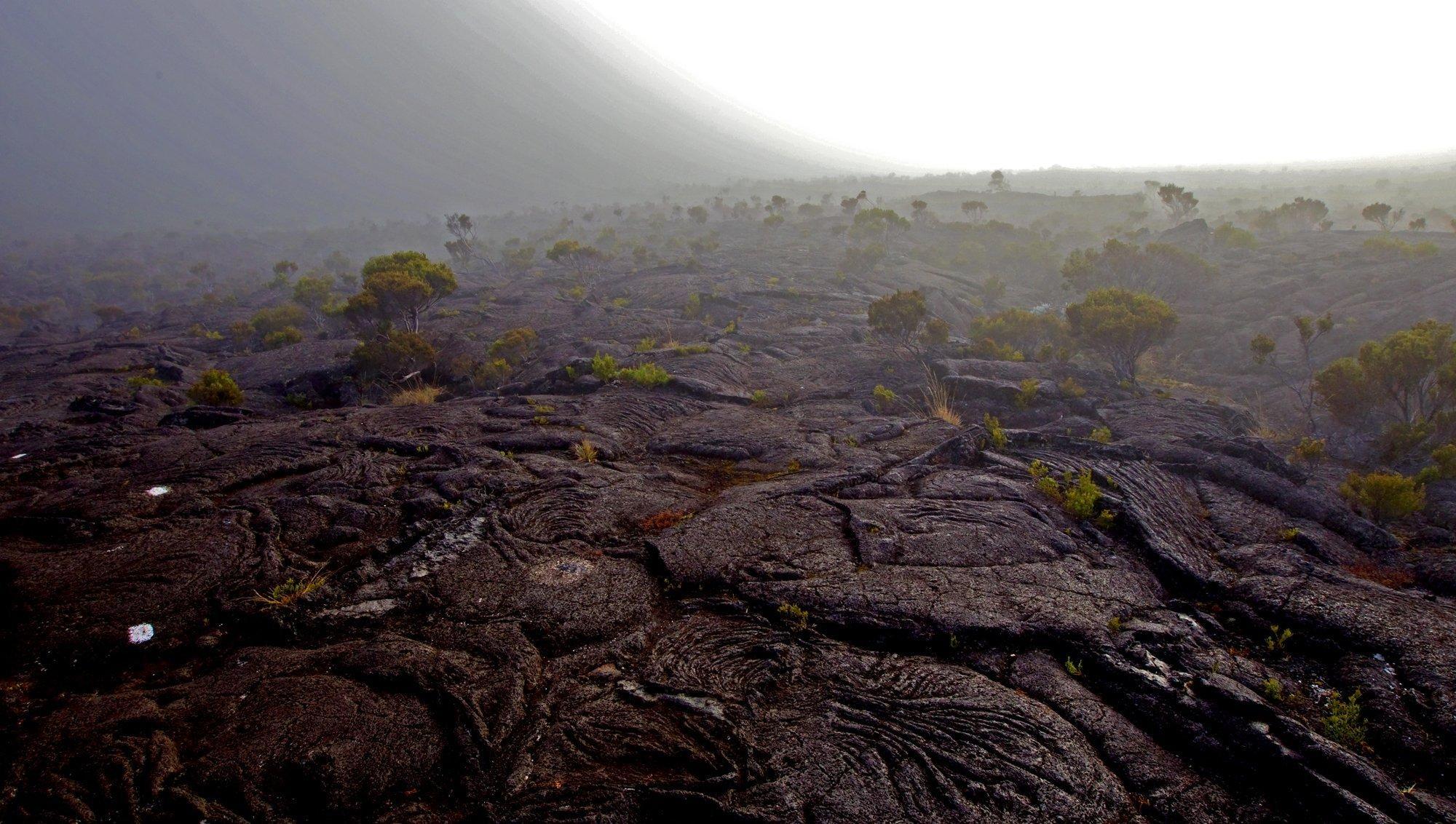 Ein Lavafeld auf La Reunion im Morgennebel