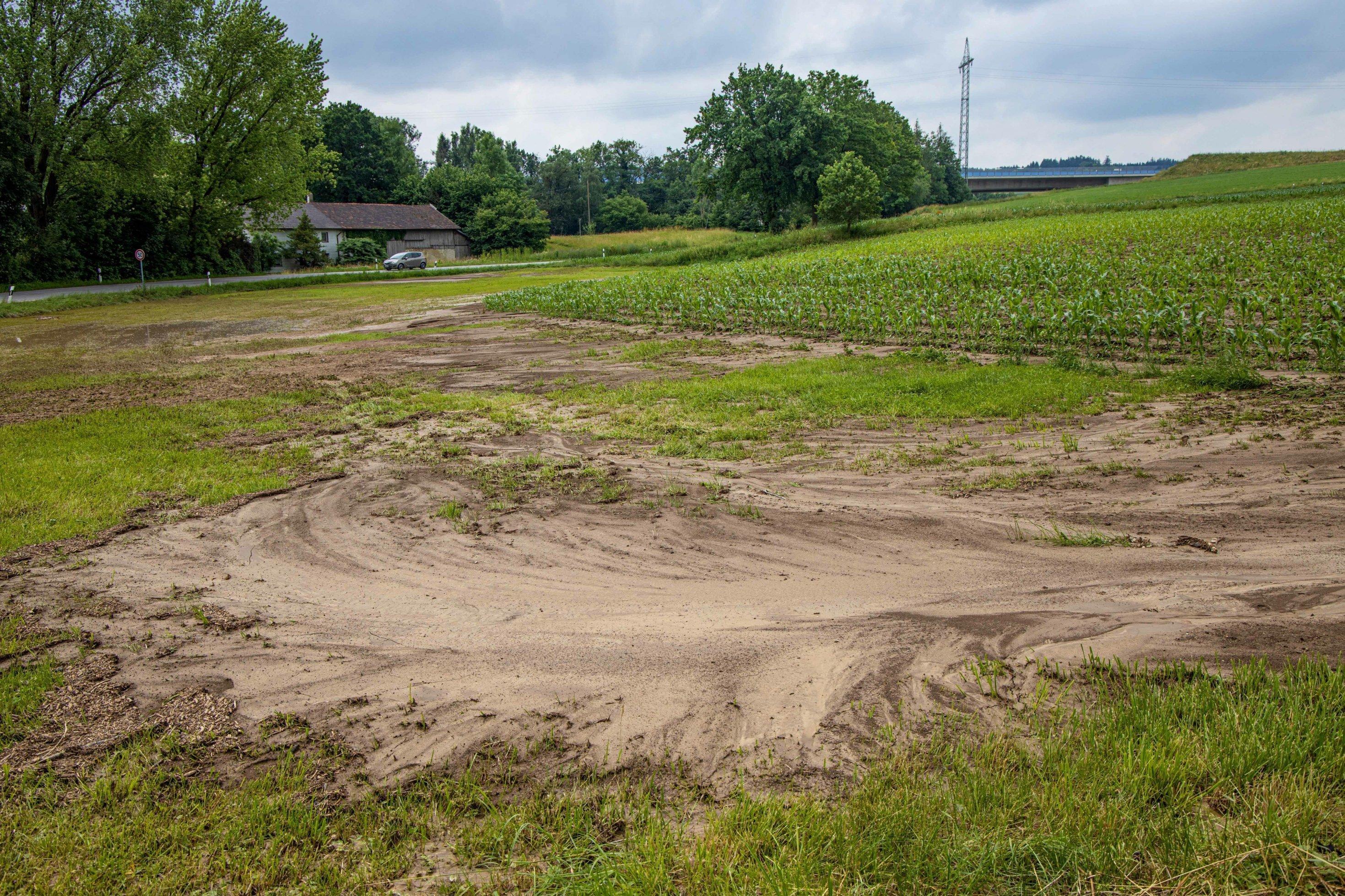 abgeschwemmter Boden vor einem Hang mit Maisfeld