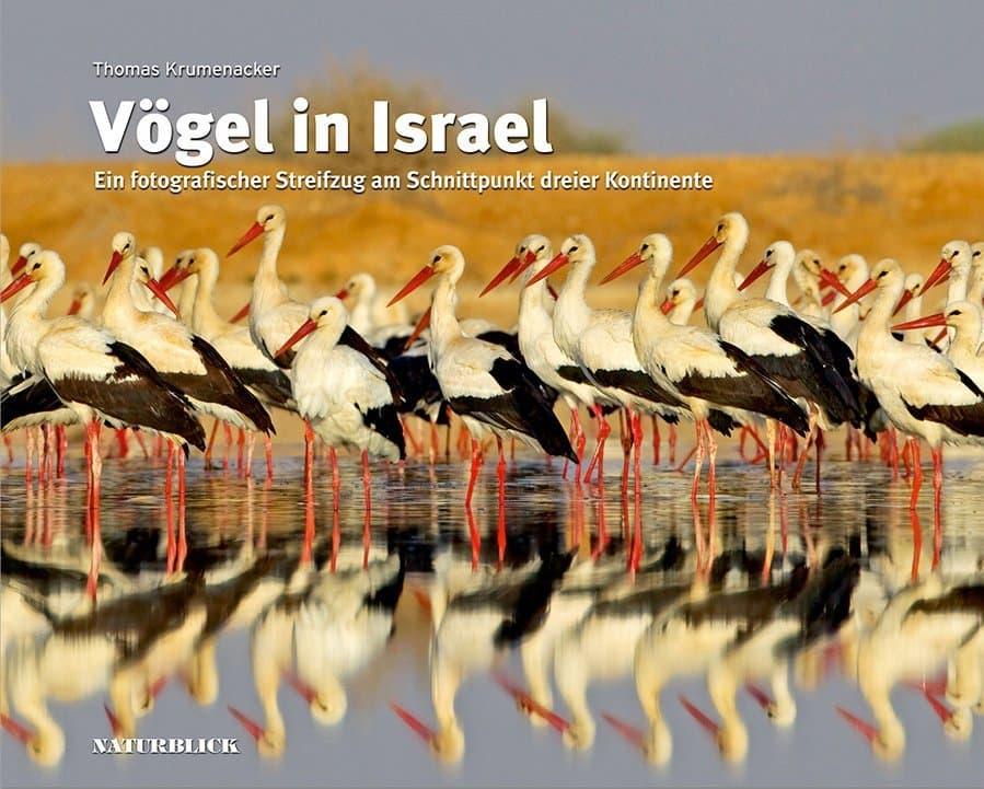 Das Buchcover von Vögel in Israel, es zeigt eine Gruppe Weißstörche