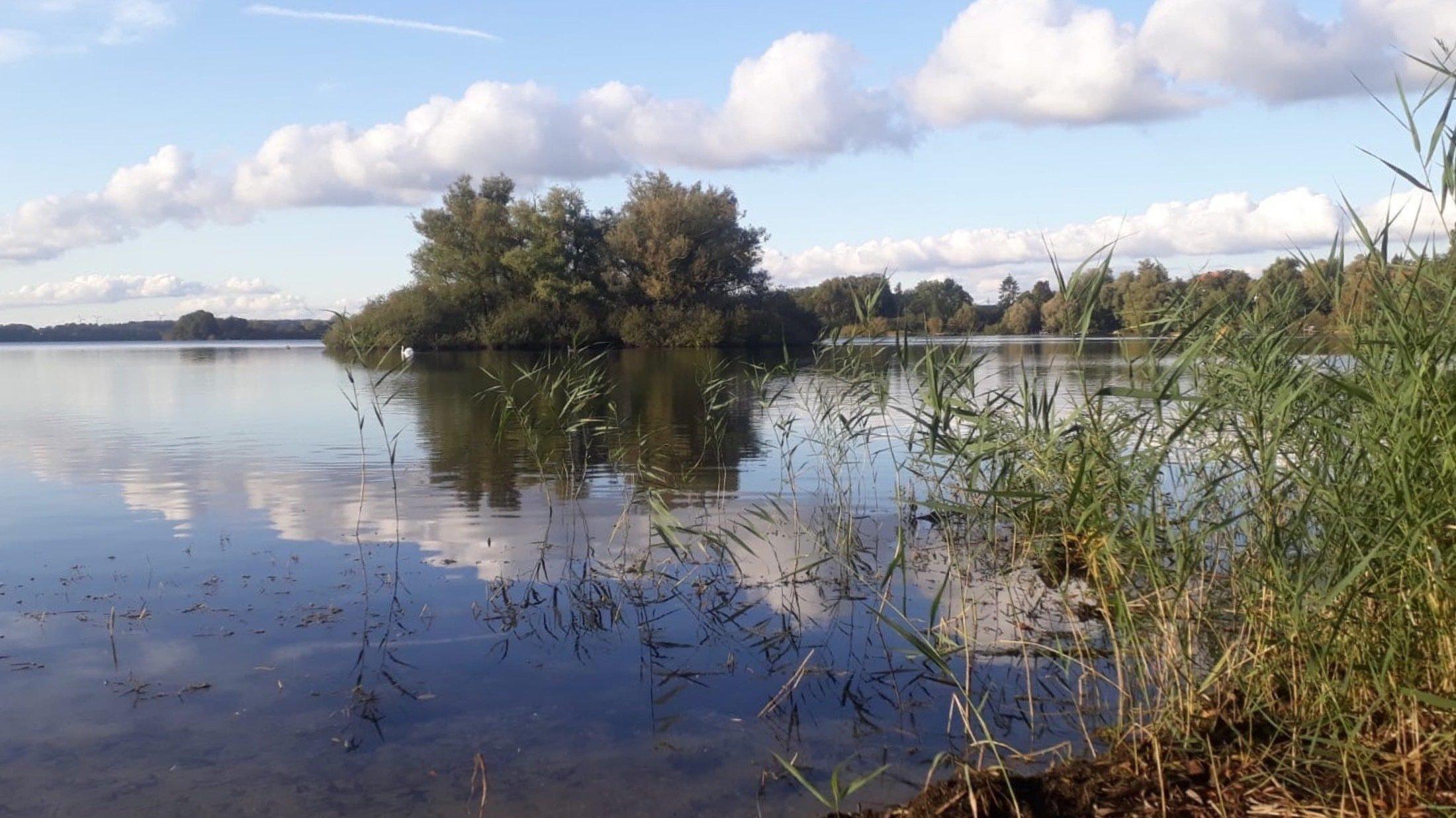 Das Bild stellt einen See dar, in dessen Mitte sich eine bewaldete Insel befindet. Es liegt ein Hauch von Herbststimmung in der Luft.