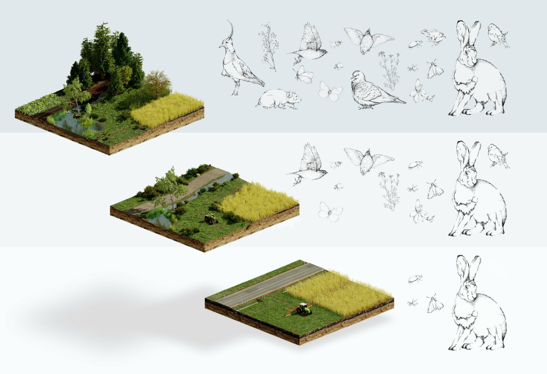 Die Illustration zeigt drei Landschaftstypen von artenreich bis Monokultur.