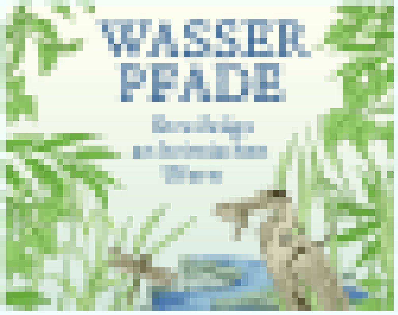 """Cover von Thomas Schäfers """"Wasserpfade""""."""