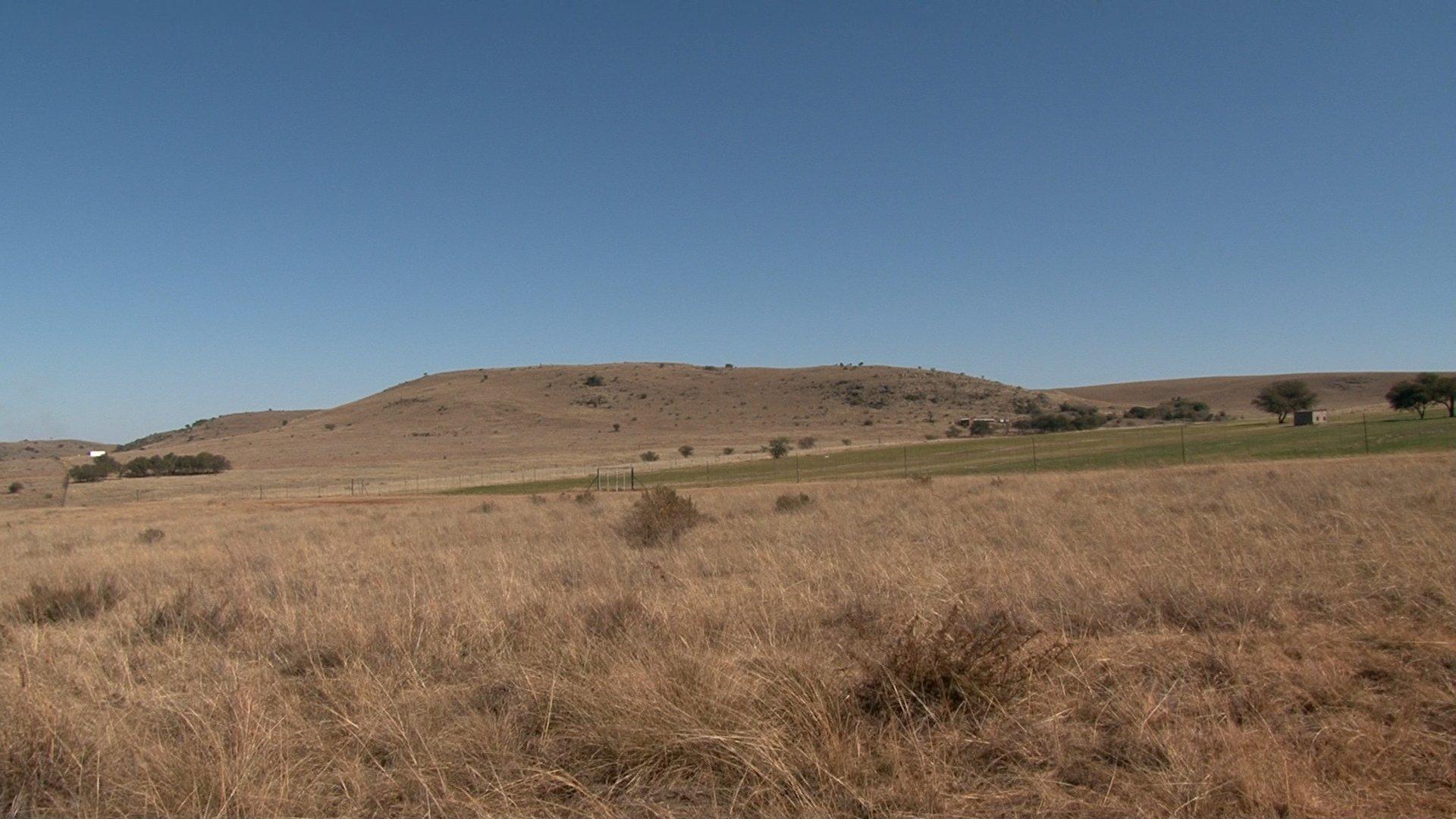 Das Foto zeigt eine trockene, braune Graslandschaft mit einzelnen Büschen und Bäumen dazwischen, im Hintergrund sanft geschwungen Hügel. Hier entdeckten Forschende in Karsthöhlen zahlreiche Relikte aus der menschlichen Verwandtschaft. Die Drimolen-Fossilienfundstätte liegt in der Nähe von Kromdraai in Südafrika.