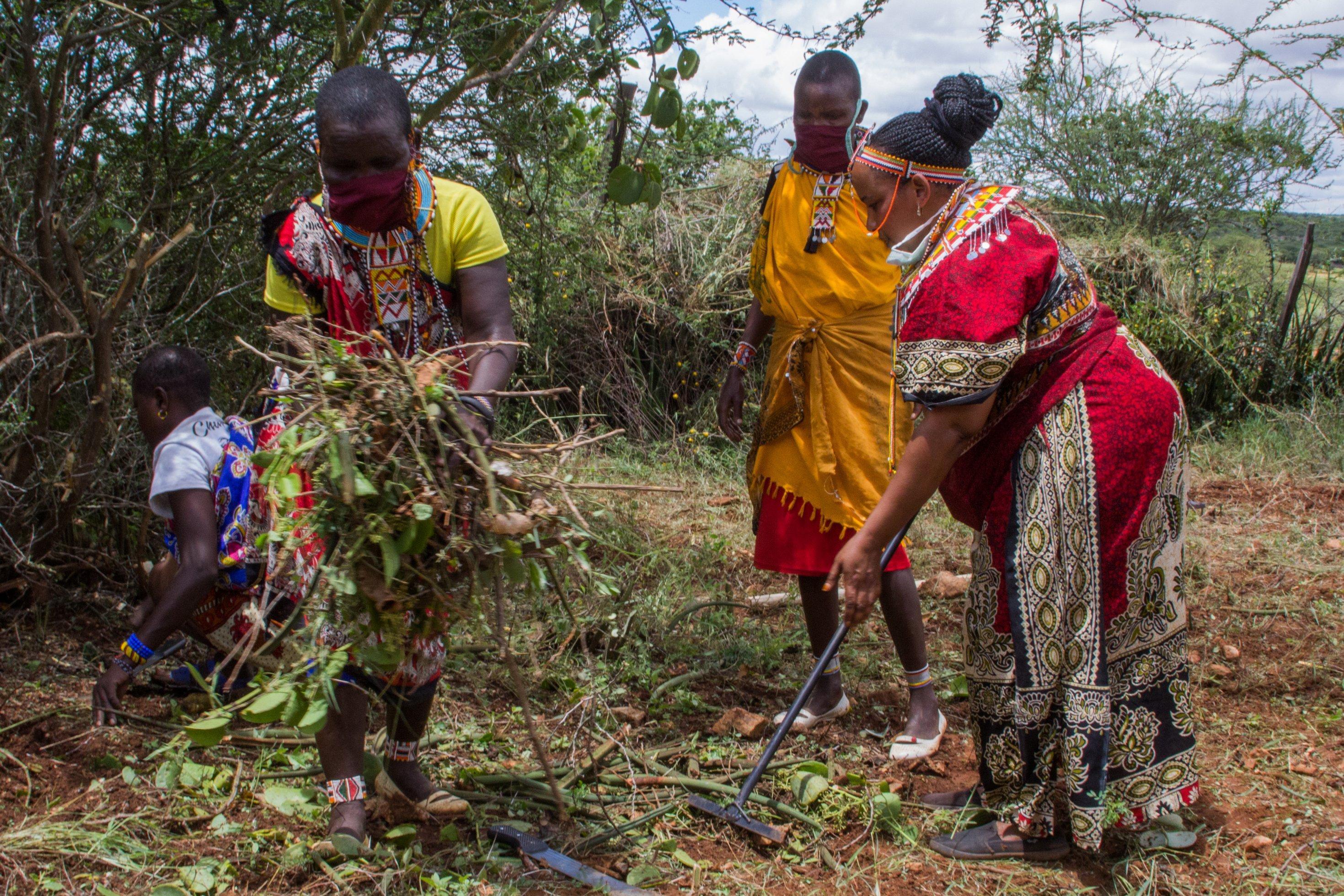 Ellie Modesta rodet gemeinsam mit anderen Maasai-Frauen ein Stück Land im Garten der Massai-Lodge in Laikipia. Hier wollen sie Gemüse anbauen.
