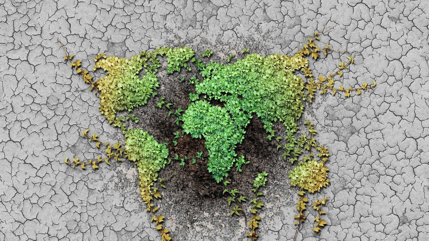 Eine Illustration der Erde, in der die Kontinente durch Pflanzen dargestellt werden
