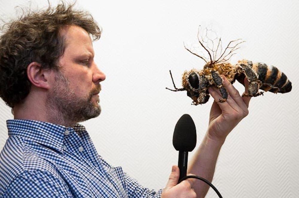 Der Journalist Joachim Budde. In einer Hand hält er eine übergroße Nachbildung einer Biene.