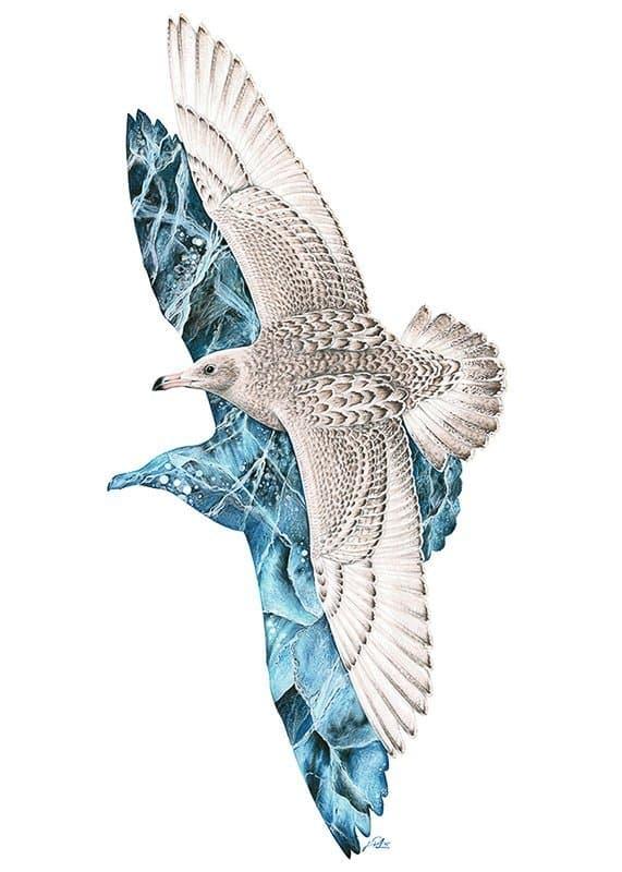 Künstlerische Darstellung einer fliegenden, weißen Eismöwe. Ihr Schatten sieht so aus, als würde er aus Eis bestehen.