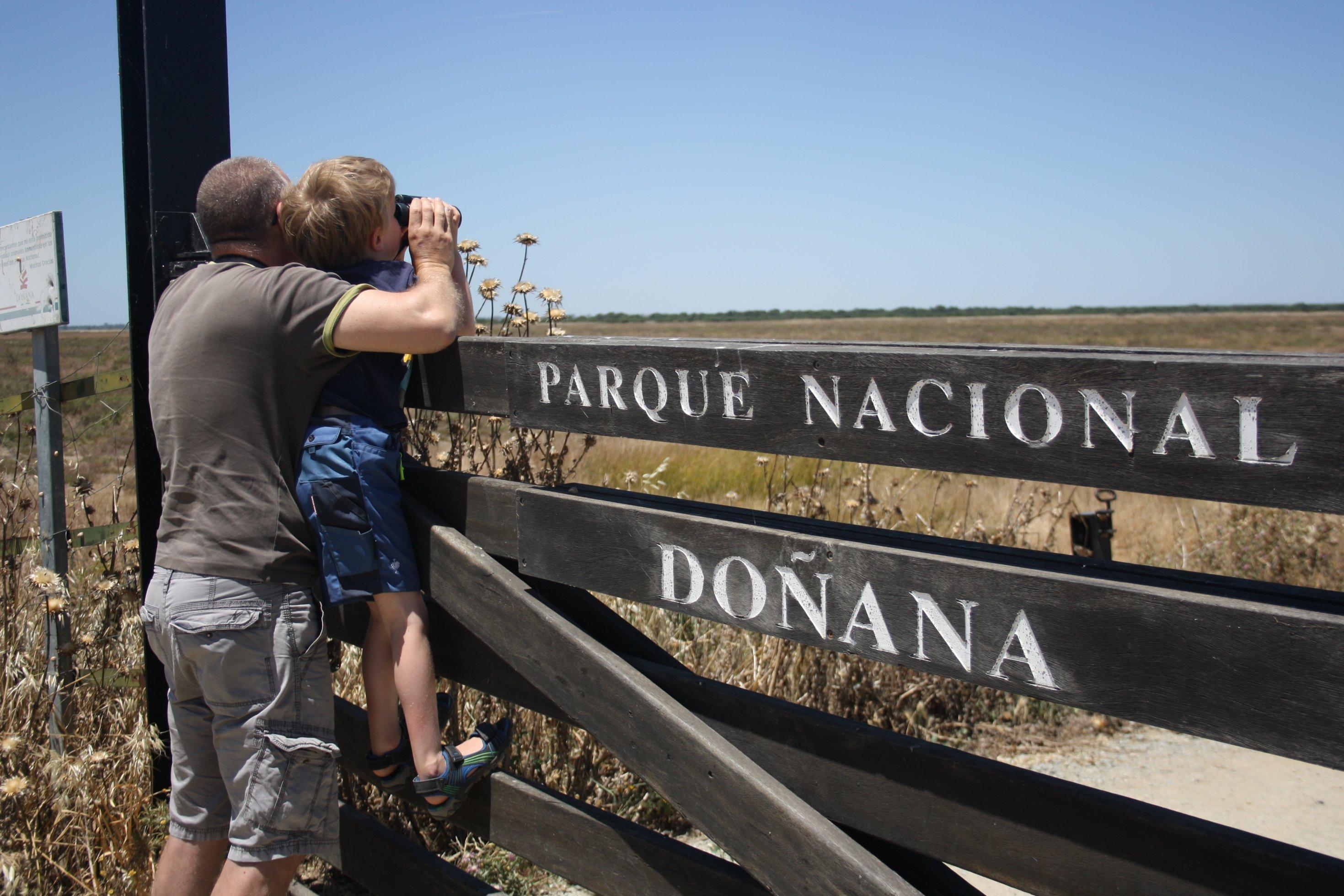 Ein Mann und ein Junge schauen mit dem Fernglas über einen Holzzaun, auf dem Parque Nacional Doñana steht.