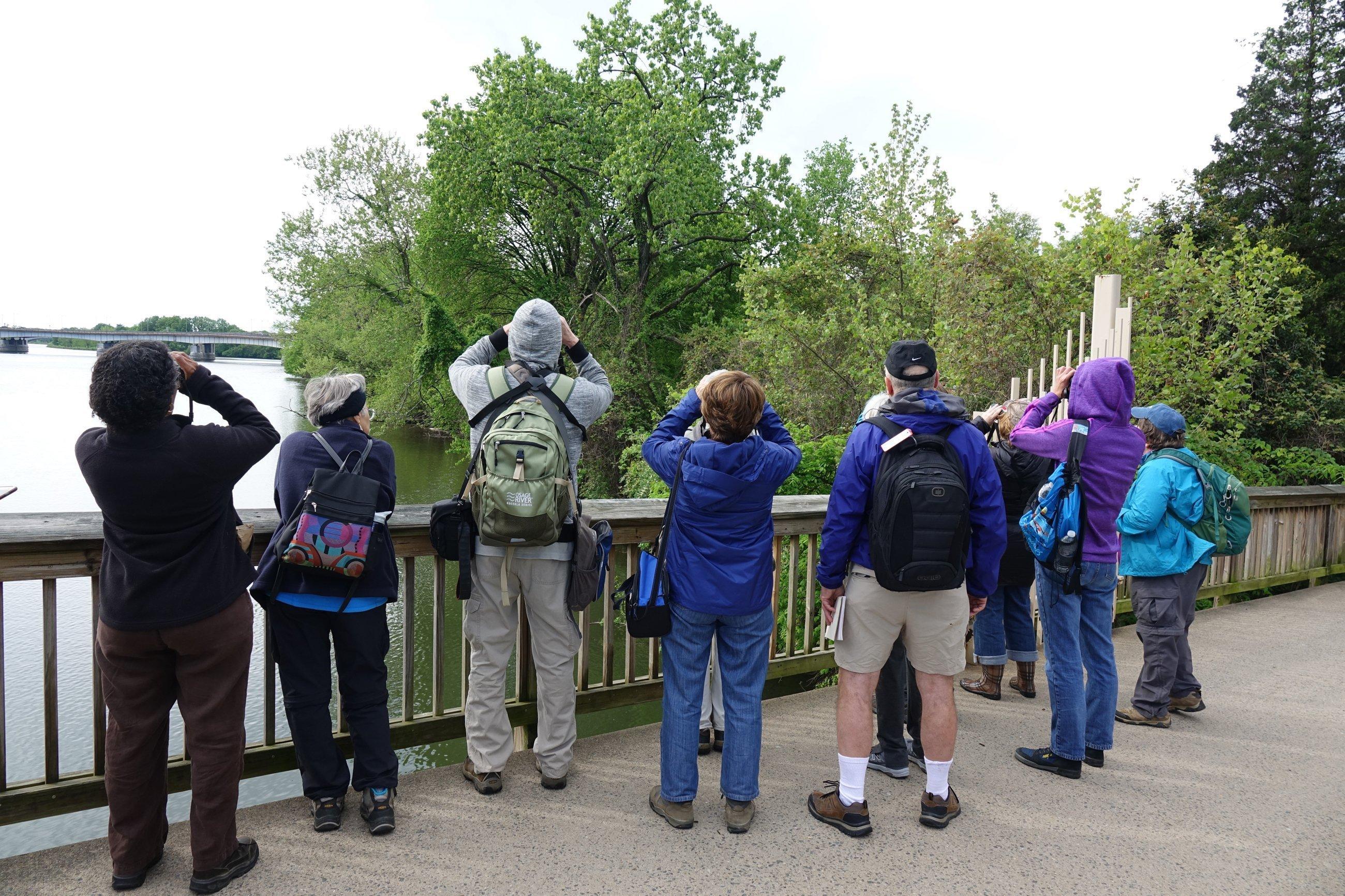 Eine Gruppe Menschen mit Ferngläsern in der Hand, von hinten fotografiert.