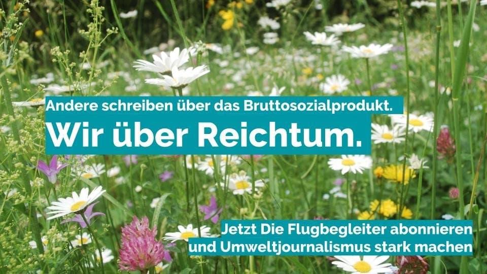 Flugbegleiter-Werbung: Wir schreiben über den Reichtum der Natur.