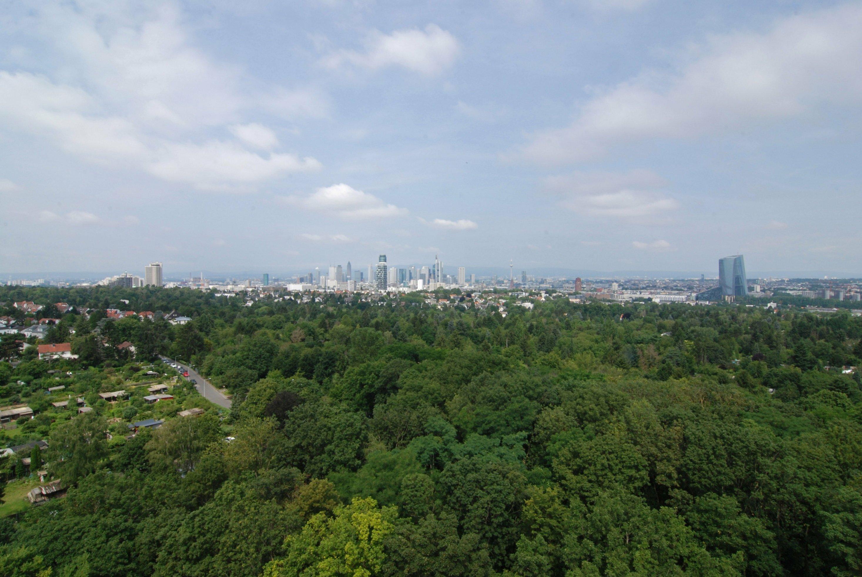 """Frankfurt am Main. Ansicht von der Aussichtsplattform des 43Meter hohen """"Goetheturms"""" im Stadtwald Frankfurt Sachsenhausen. Rechts: Das Gebäude der Europäischen Zentralbank (EZB)."""