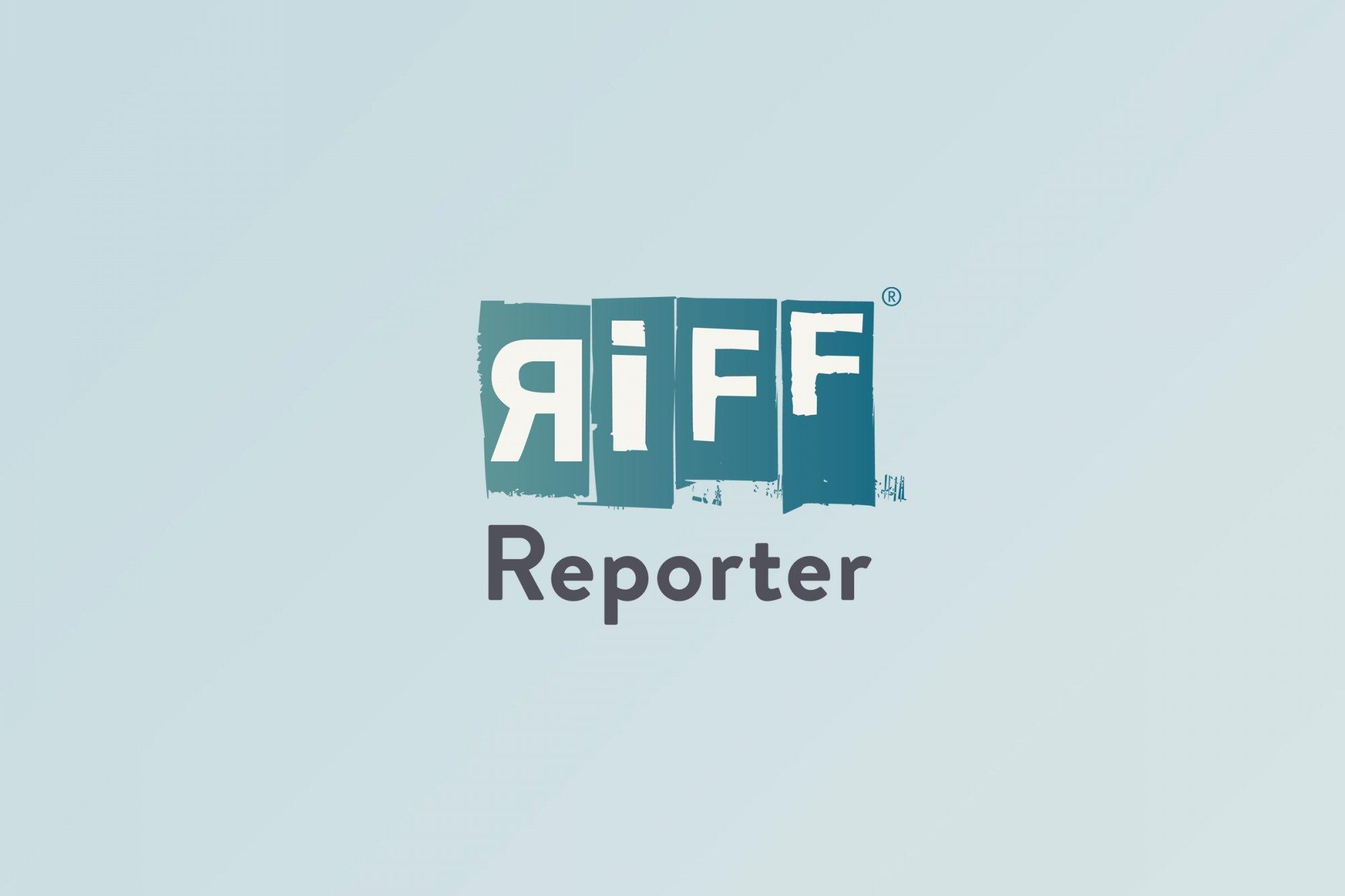 Eine Gruppe aus mehreren Dutzend Kiebitzen im Flug vor grauem Himmel