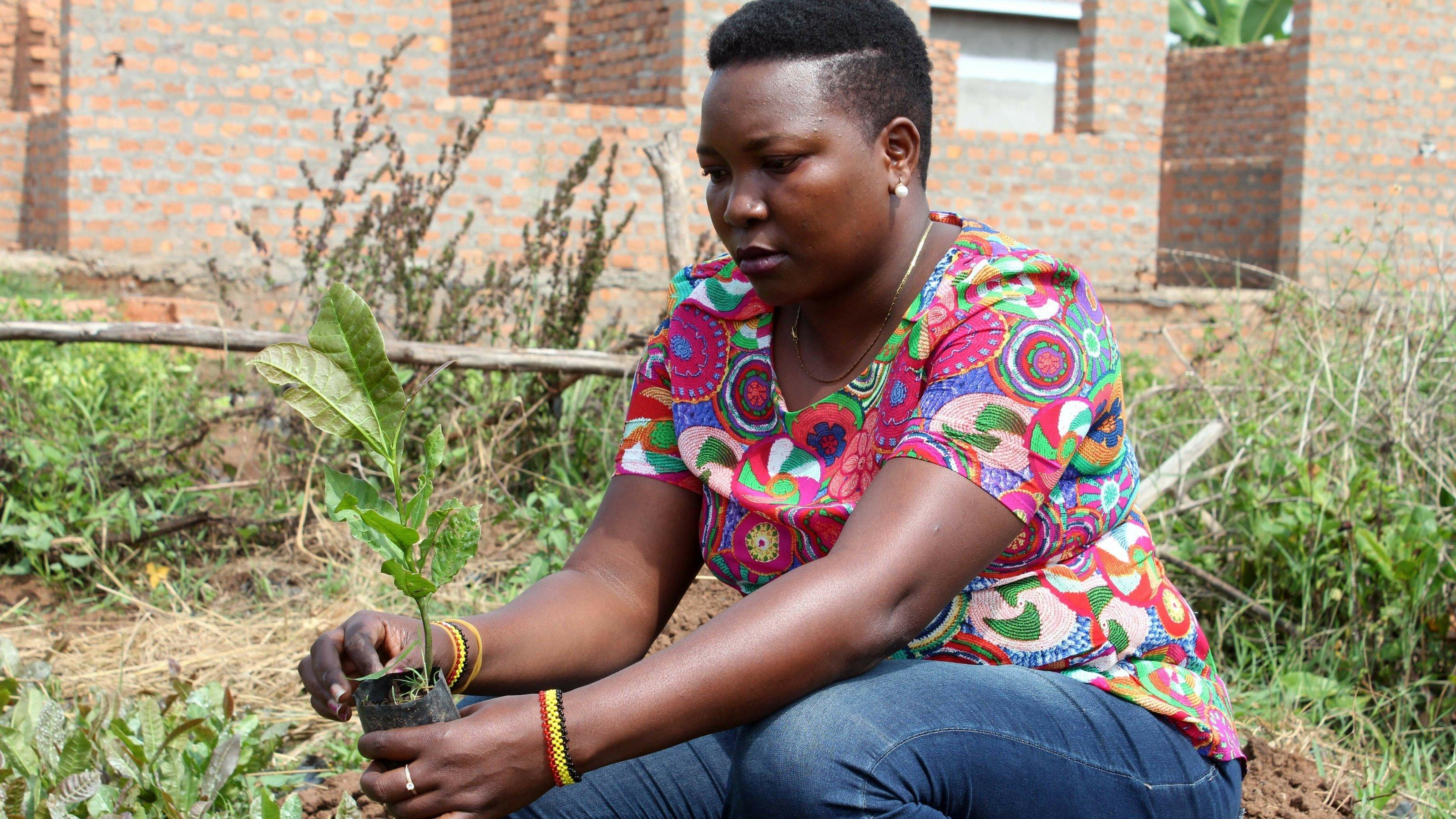 Eine Frau mit einem Setzling in Uganda.