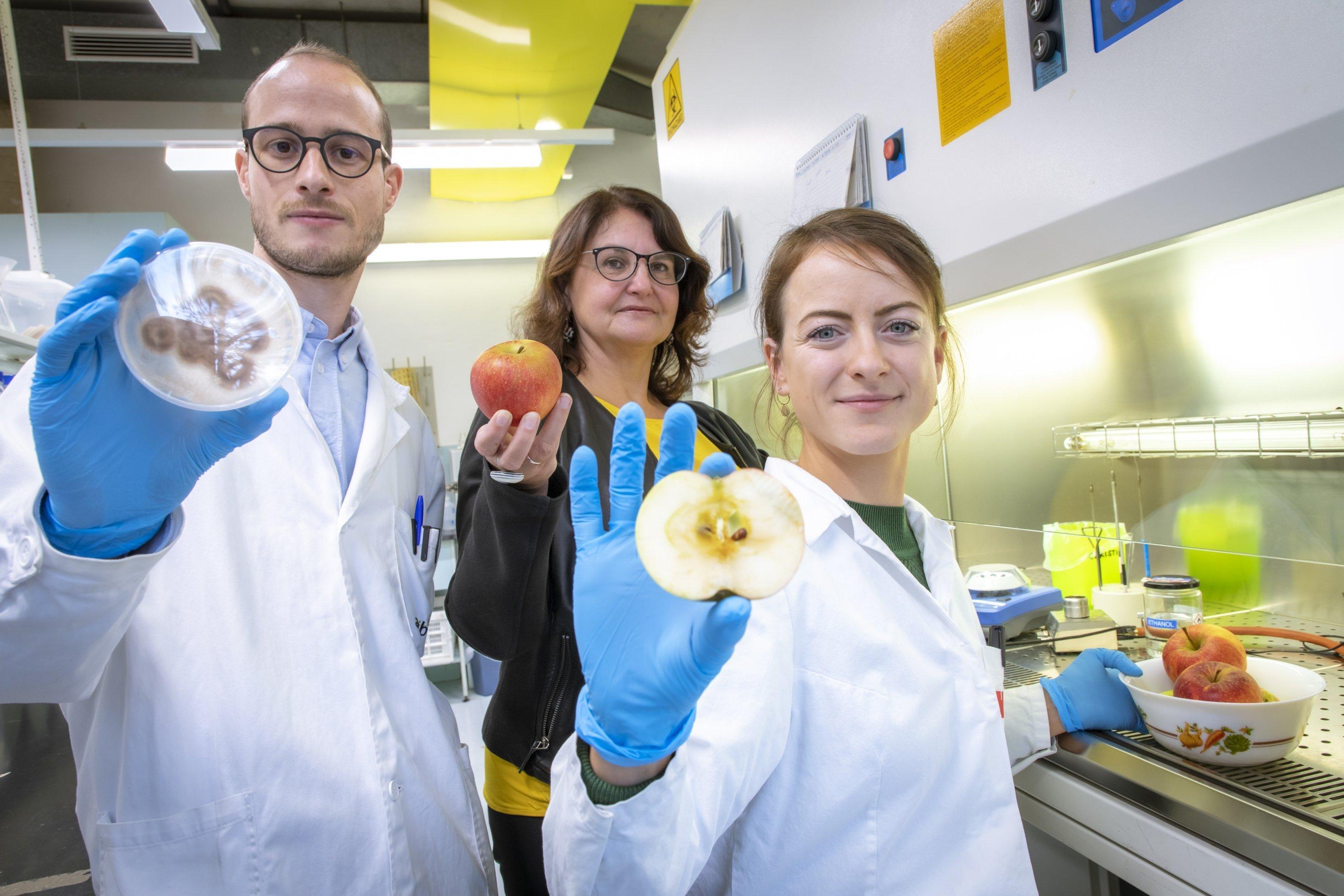 Prof. Gabriele Berg steht mit zwei Mitarbeitern im Labor. Sie hält einen Apfel in der Hand, an dem sie das Mikrobiom erforscht.