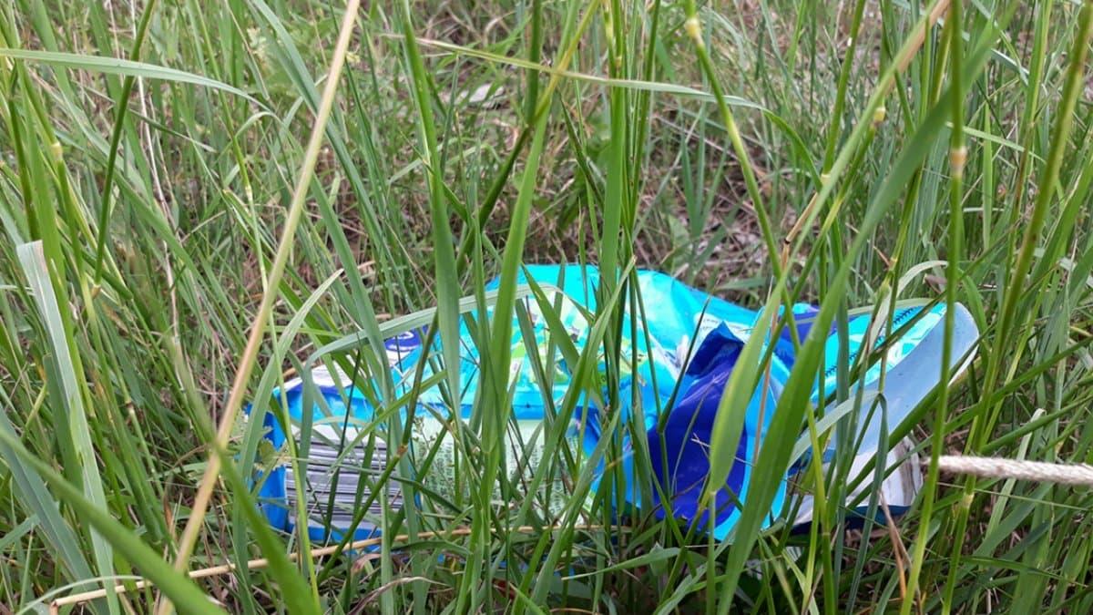 ein blauer Plastiksack liegt im hohen Gras einer Wiese