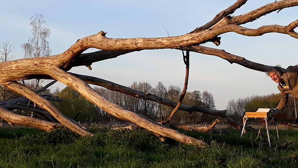 Gerhard Richter läuft zu seinem Klapptisch neben dem toten Geäst eines umgestürzten Baumes