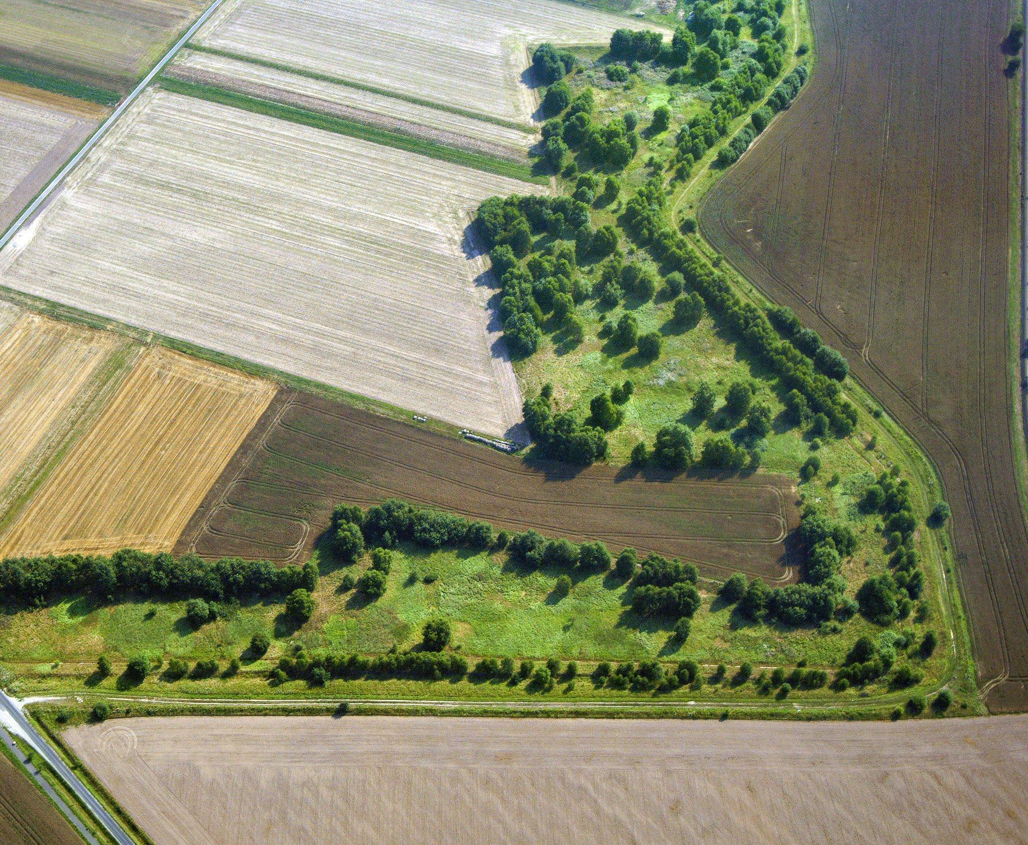 Zwischen Äckern zieht sich im Zickzack das Grüne Band durch die Landschaft. Blick aus der Luft.