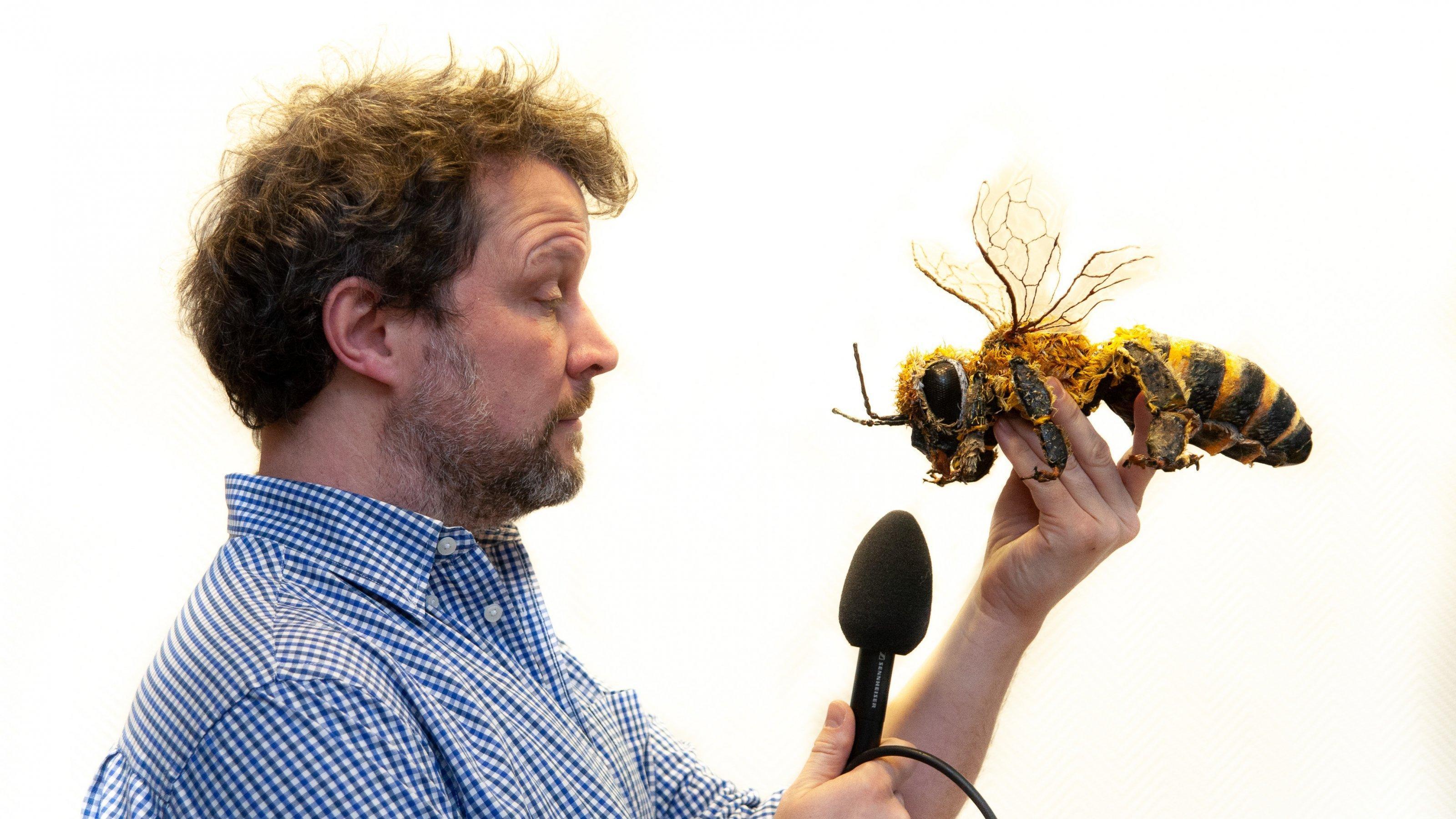 Ein Mann hält einer großen Biene aus Pappmaché ein Mikrofon vor den Mund.