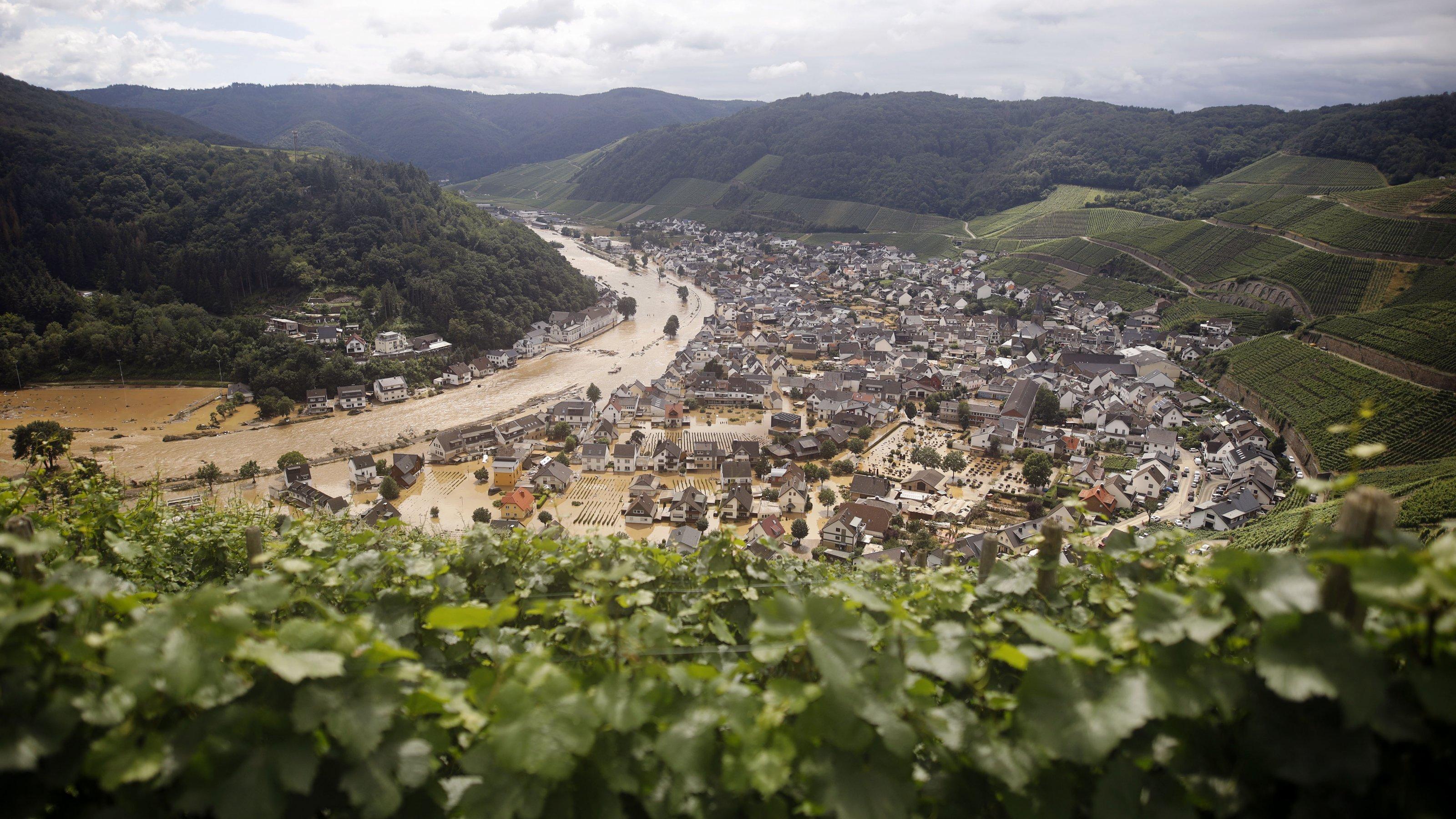 Im Vordergrund Weinreben, dahinter das Ahrtal und die überschwemmte Ortschaft.