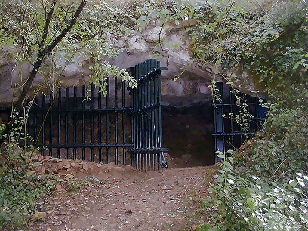 Als dunkles länglich-ovales Loch zeigt sich der Eingang der Grotte de Cussac. Er ist mit einem massiven Metallgitter vor unbefugten Besuchern geschützt. Links und rechts im Vordergrund stehen grünblättrige Sträucher und kleine Bäume, vorne in der Mitte befindet sich ein steiler Aufgang aus Steinen und felsigem Boden. Über dem Oval des Eingangs ist mächtiger grauer Felsen zu sehen, der das Dach der Höhle bildet. Tief im Inneren der riesigen Grotte, die sich vom Eingang aus 1000Meter in die eine und 600Meter in die andere Richtung erstreckt, finden sich die 30.000Jahre alten steinzeitlichen Gräber.