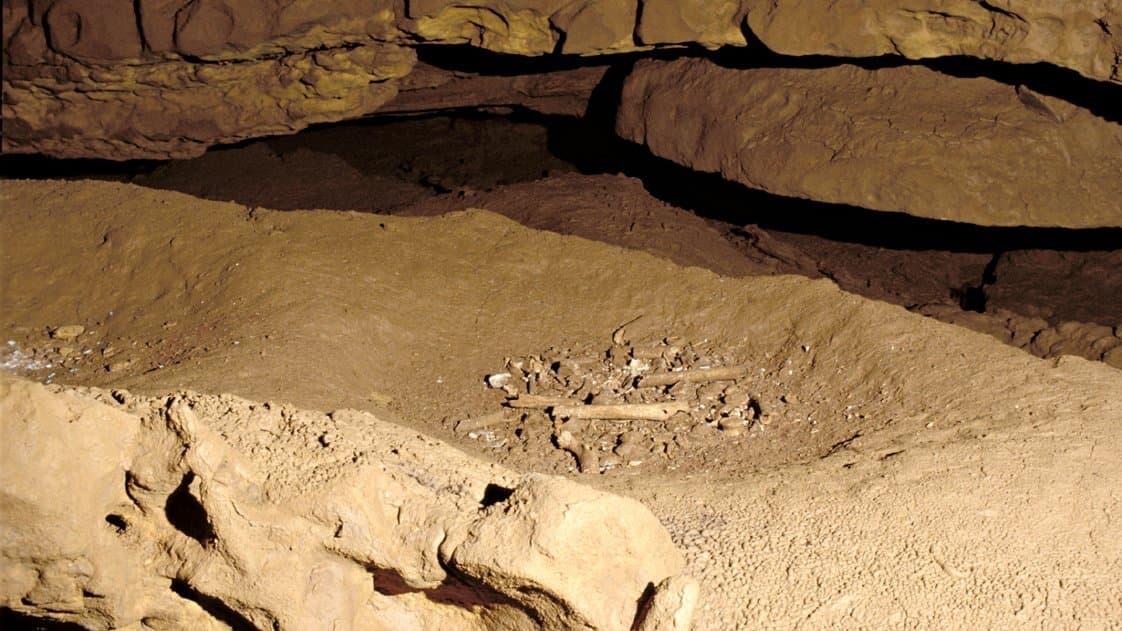 Zu sehen ist hinten-oben die sandfarbene Wand der Grotte de Cussac, weiter vorne eine Felserhöhung und dazwischen eine Mulde, in der menschlichen Knochenrelikte durcheinandergewürfelt liegen – eine Grabstätte. Jäger und Sammler der Steinzeit haben vor 30.000Jahren ihre Toten bereits regelmäßig bestattet.