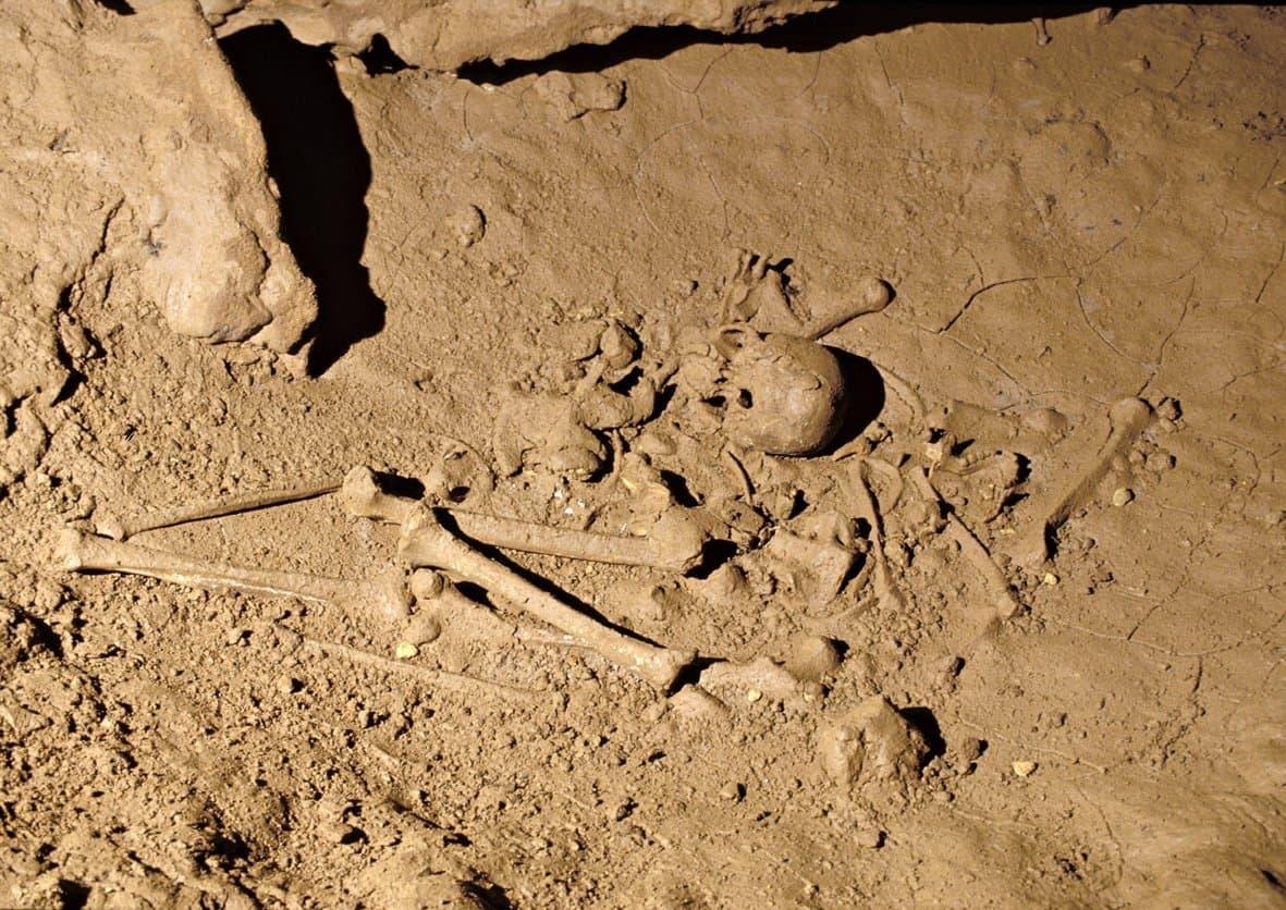 Das Bild zeigt das nahezu komplett erhaltene, 30.000Jahre alte Skelett eines jungen Mannes, das in einer Mulde am Boden der Grotte de Cussac, einer Höhle im Südwesten Frankreichs gefunden wurde. Gut erkennen lassen sich die langen Beinknochen und der Schädel, auch Teile des Beckens und der Armknochen. Das Skelett ruht in der ehemaligen Schlafkuhle eines Höhlenbären. Es wirkt, als sei der Tote dort von seinen Angehörigen zusammengekauert abgelegt und bestattet worden.