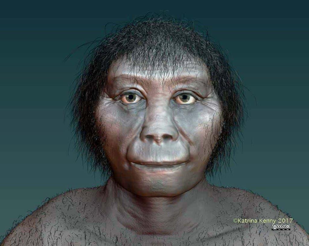 Gezeigt wird die künstlerische Darstellung des Zwergmenschen Homo floresiensis, auch Hobbit genannt. Sein Gesicht wirkt rundlich und sehr urtümlich. Neuen Forschungen von Wissenschaftlern der Australian National University zufolge könnte es sich bei dem Wesen um eine Geschwister-Art des Frühmenschen Homo habilis handeln.