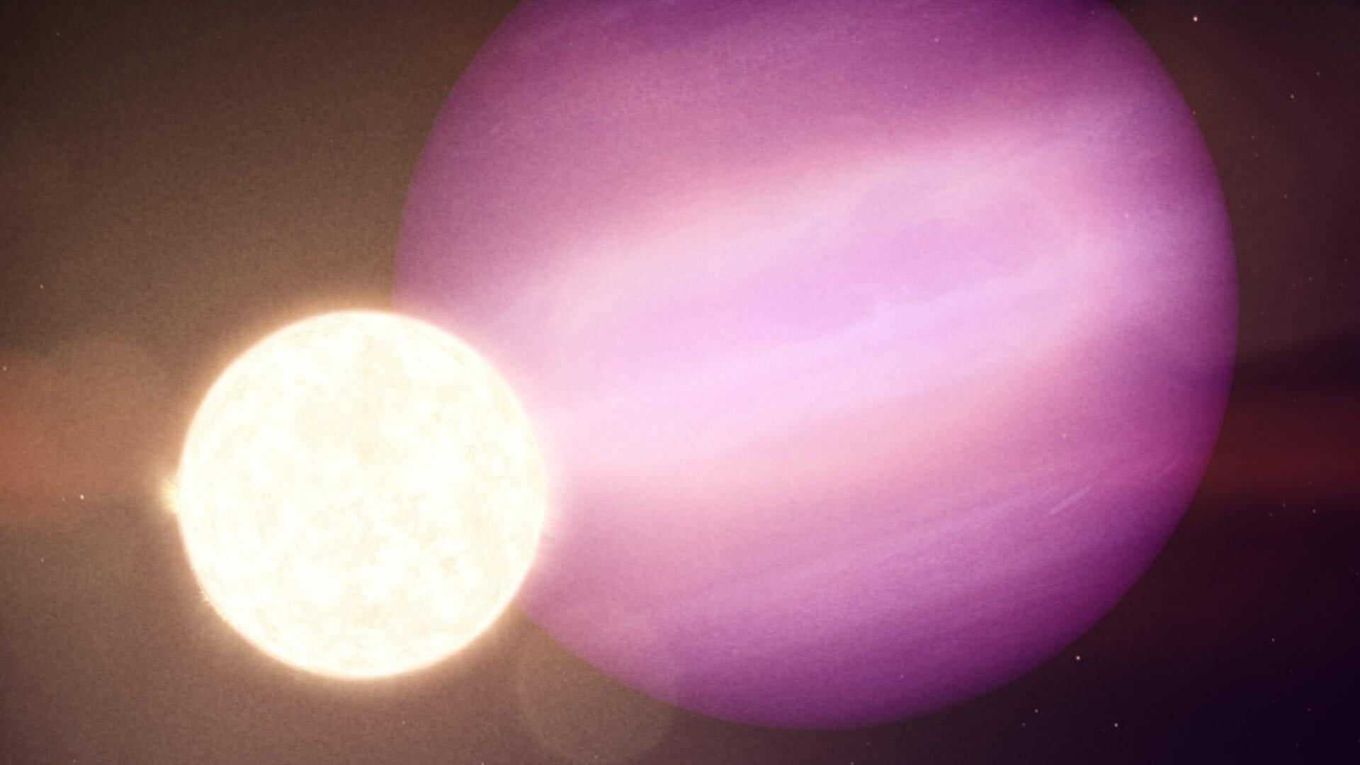 """Die künstlerische Darstellung zeigt den Planeten WD1856b mit seinem """"Stern"""", der in Wirklichkeit ein Weißer Zwerg ist. Erdunähnlich ist der Planet nicht nur, weil es sich dabei um einen Gasriesen handelt, sondern weil er größer ist als der Stern, den er umkreist. Im Bild ist der Planet das große, rosa Etwas, der Weiße Zwerg leichtet klein und weiß."""