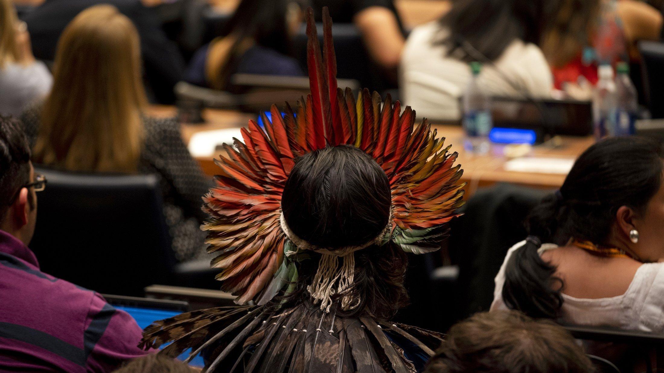 Das Foto zeigt einen Mann mit wunderschönem Federschmuck, der in einem Konferenzsaal der Vereinten Nationen sitzt, von hinten.