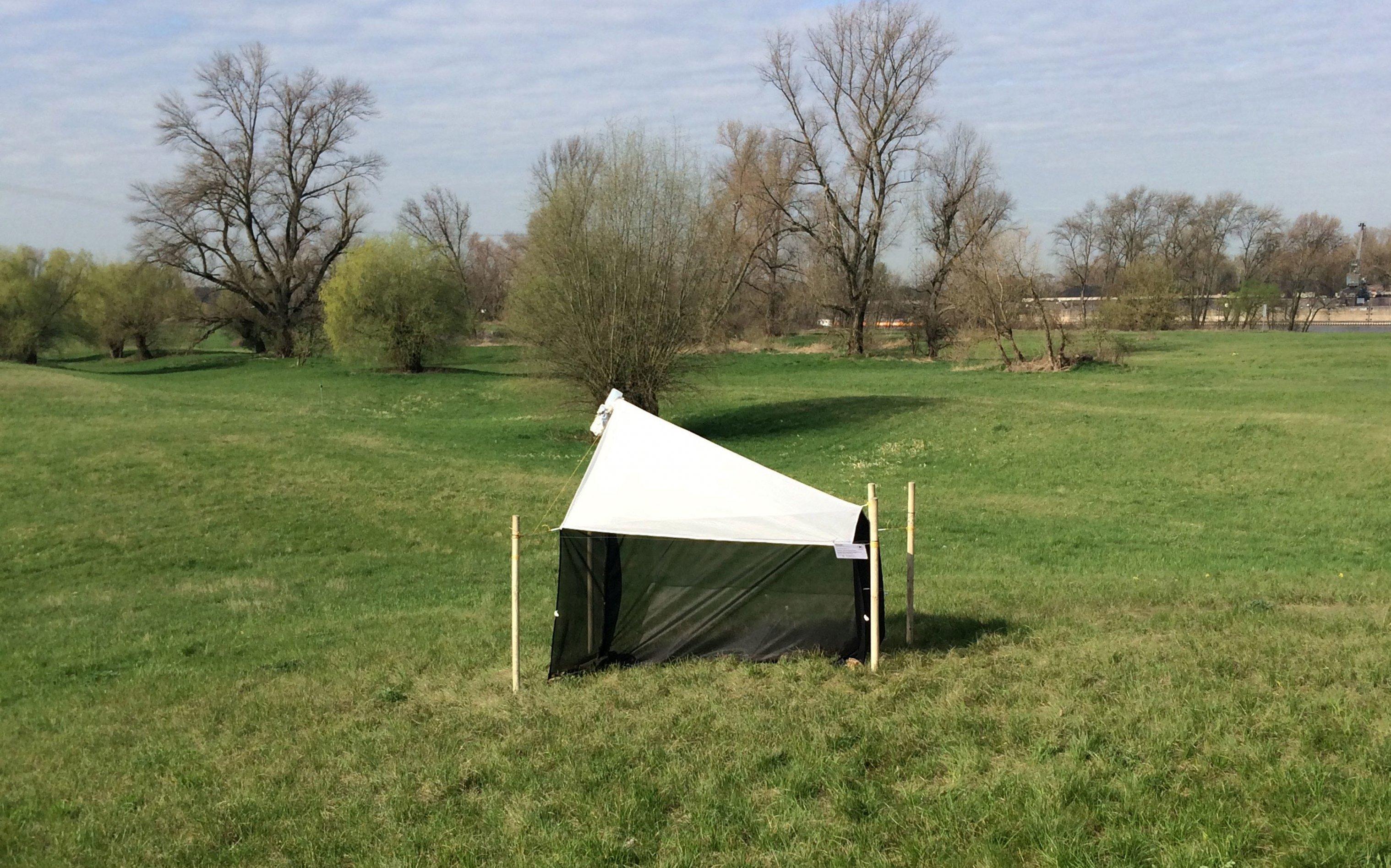 Eine Malaise-Falle auf einem Feld. Ein kleines Zelt aus Netzen.
