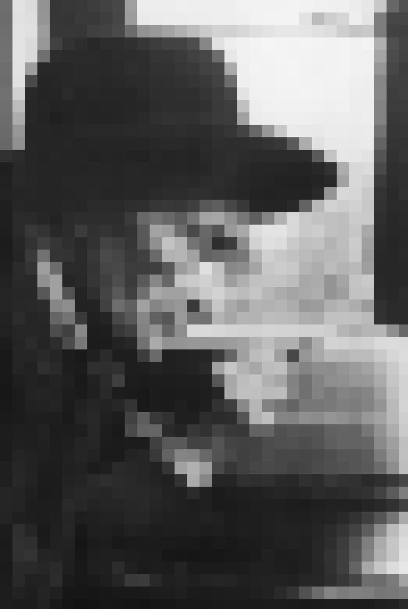 Portrait des französischen Jean-Henri Fabre in hohem Alter. Sein Gesicht ist von Falten zerfurcht.