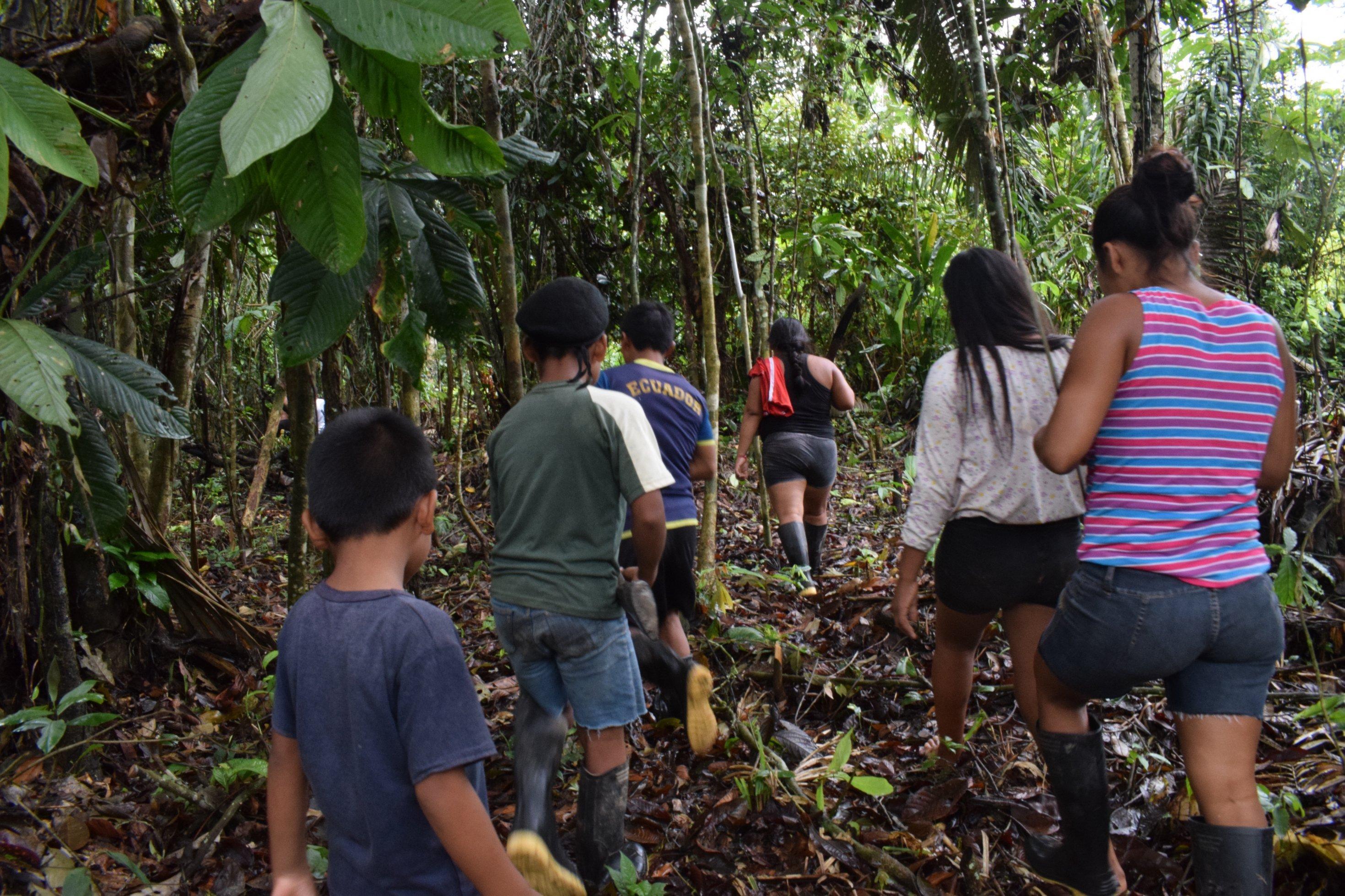 Die Kanamari (Vale do Javarí)  in Brasilien machen einen Spaziergang durch den Wald, der gleichzeitig ihr Garten ist, in dem die biologische Vielfalt von ihnen gehütet und vermehrt wird.
