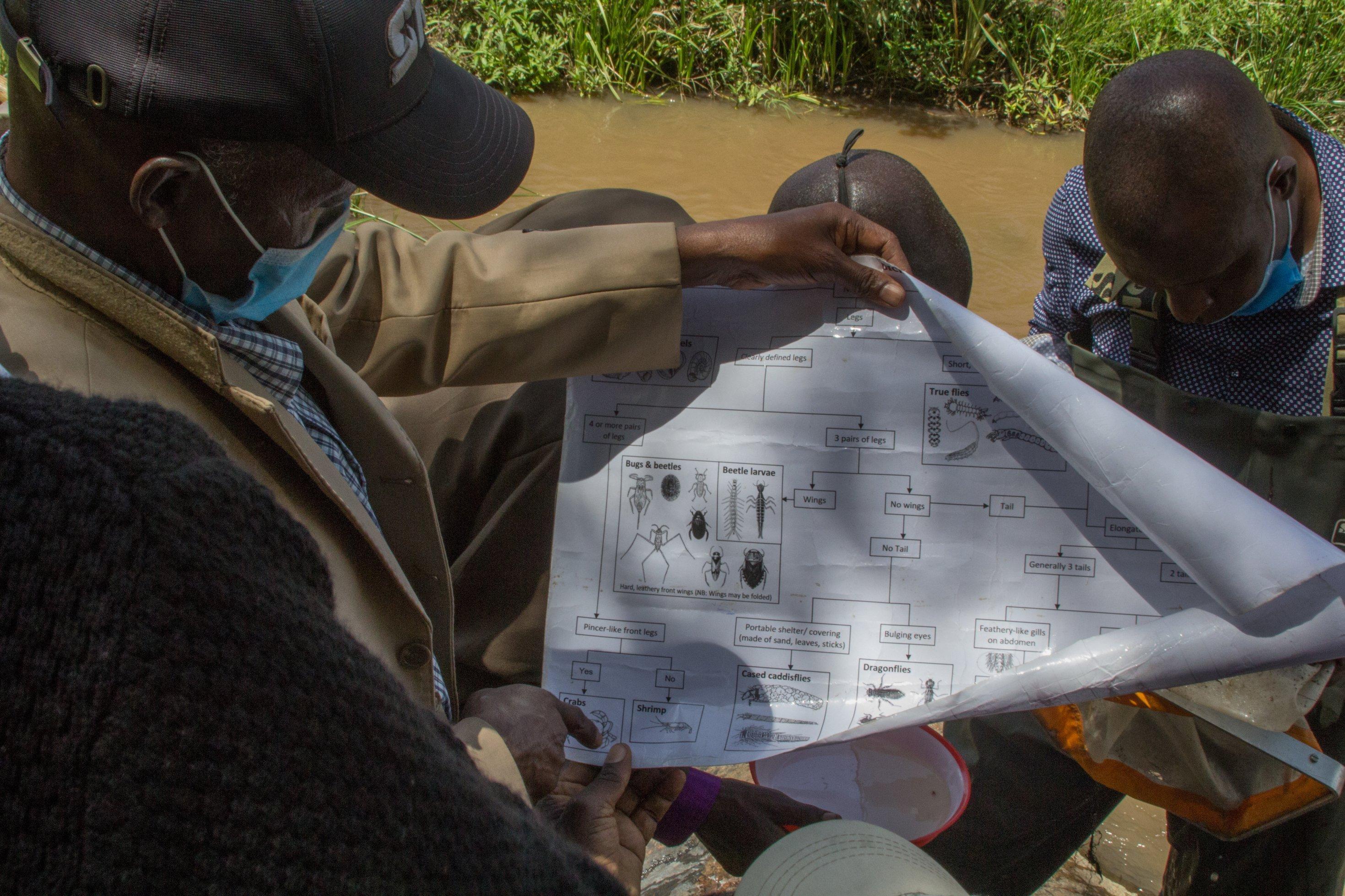 Ein Mann, der halb von hinten zu sehen ist, rollt ein Poster auseinander, darauf sind schematische Zeichnungen zur Bestimmung der Lebewesen im Fluss.