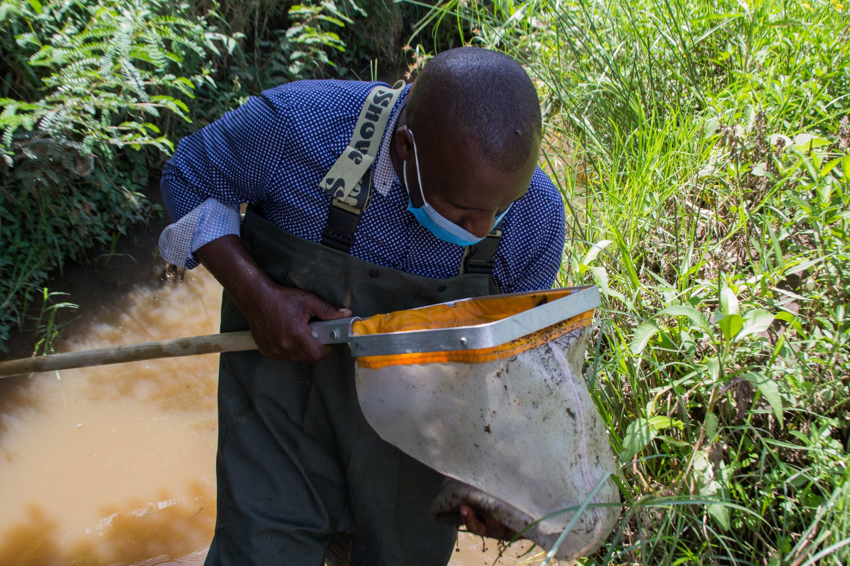Paul Ronoh steht in einer Anglerhose im Fluss, er hat einen Köcher dabei. In den guckt er und nimmt in Augenschein, was für Lebewesen er gefangen hat.