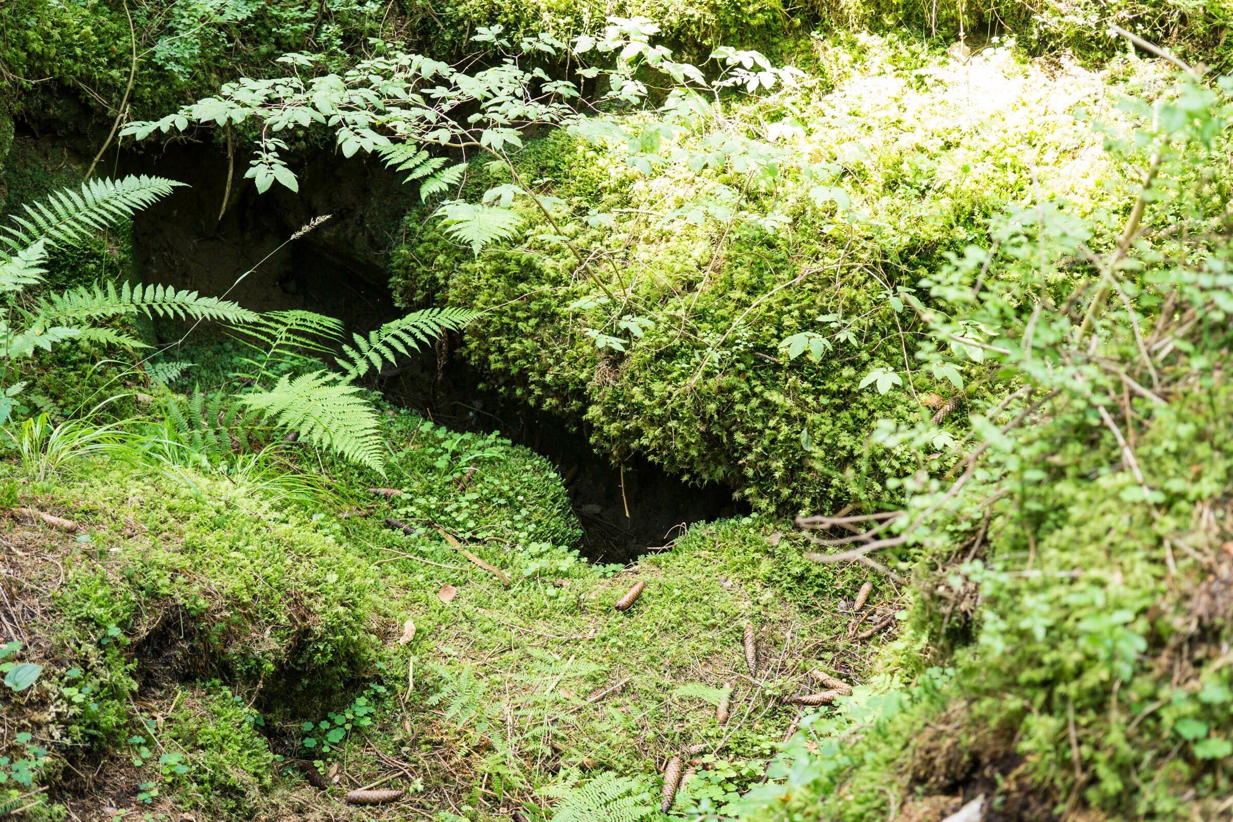 Großes dunkles Loch im Boden zwischen bemossten Felsen im Wald.