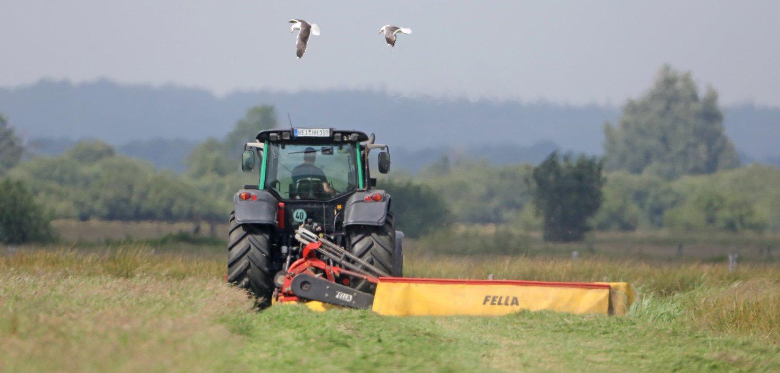 Ein Traktor schneidet das Gras in einer Wiese