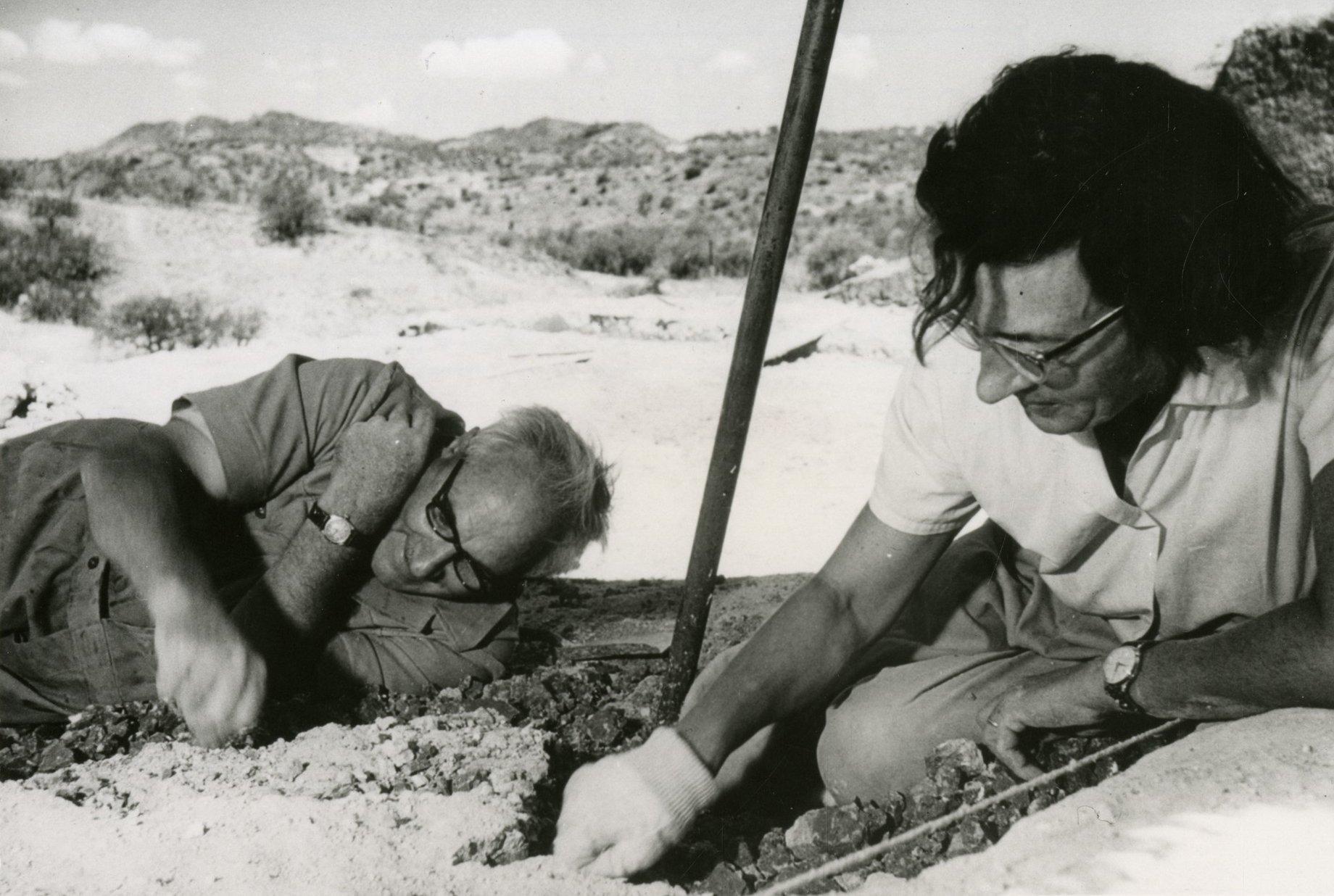 Auf dem sandigen Boden in der Olduvai-Schlucht in Tansania liegen und knien Louis und Mary Leakey, um nach Fossilien von Urmenschen zu graben. Erst finden sie dort den Nussknackermenschen und später den Homo habilis, den ersten Menschen. Dieser stellte bereits Steinwerkzeuge her.