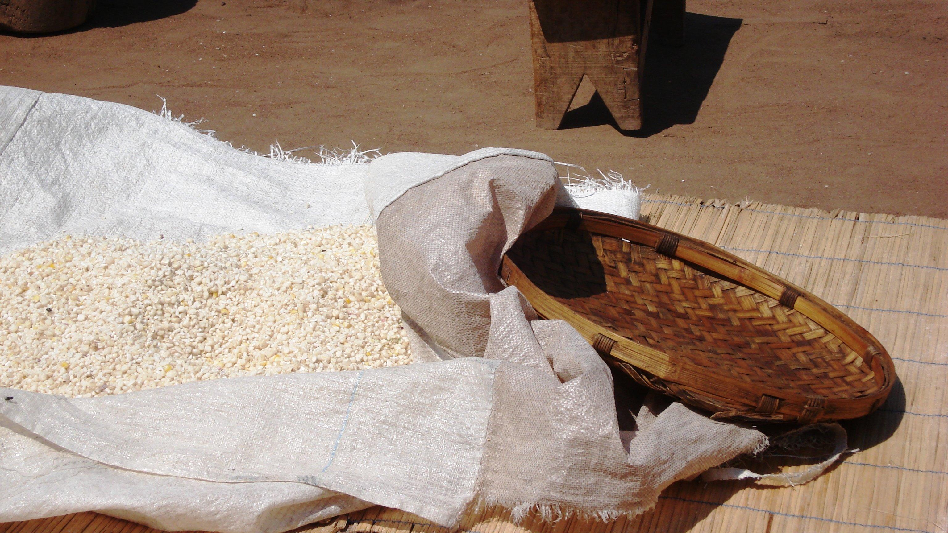 Das Bild zeigt frisch geernteten Mais, der auf einer Plane auf dem Boden liegt, daneben ein Korb und ein Schemel.