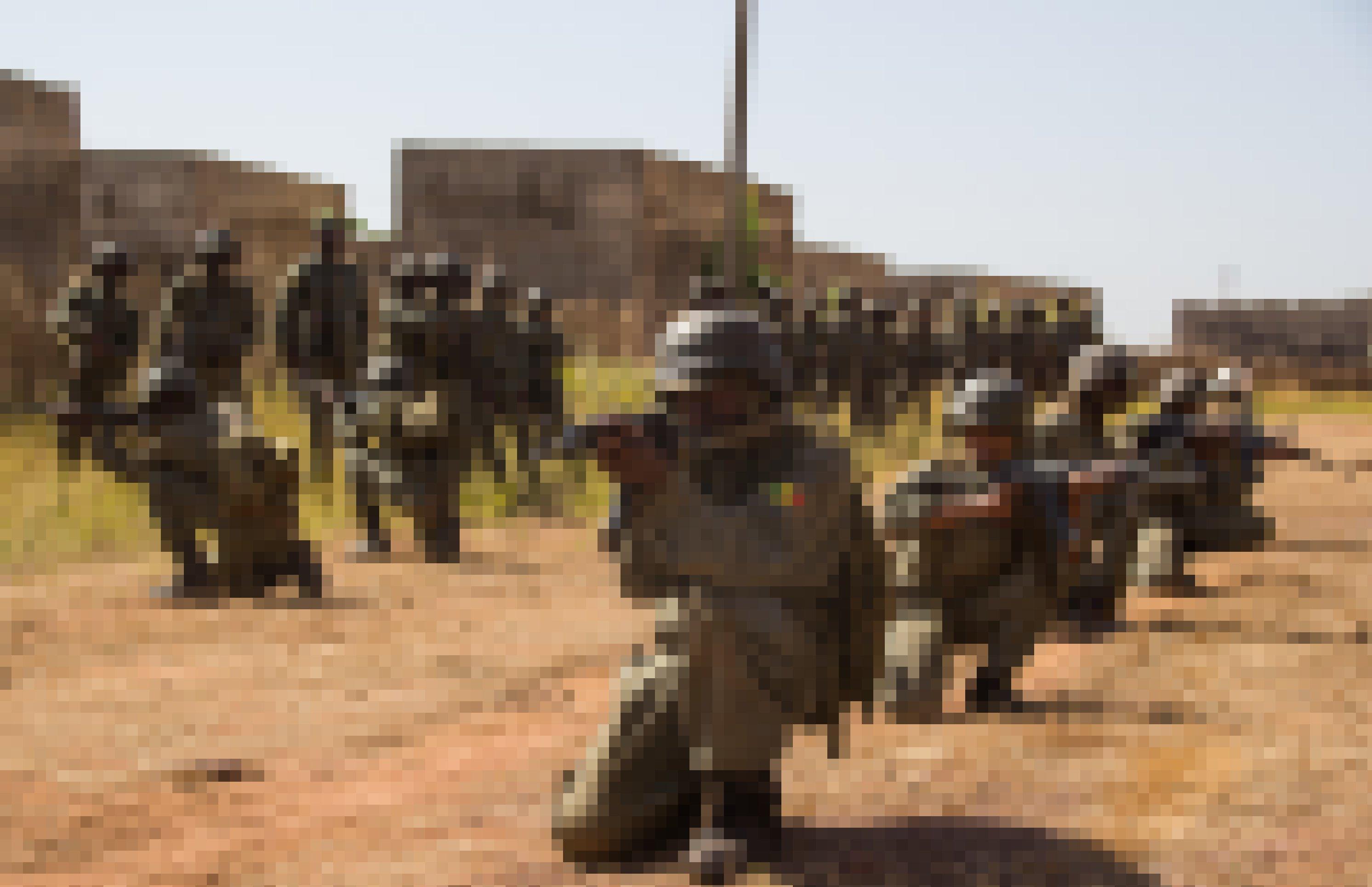 Malische Soldaten knien hintereinander in einer Reihe, die Gewehre im Anschlag. Sie üben den Häuserkampf.
