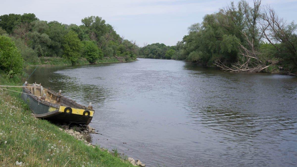 Fluss, Bäume, Ruderboot am Ufer befestigt.