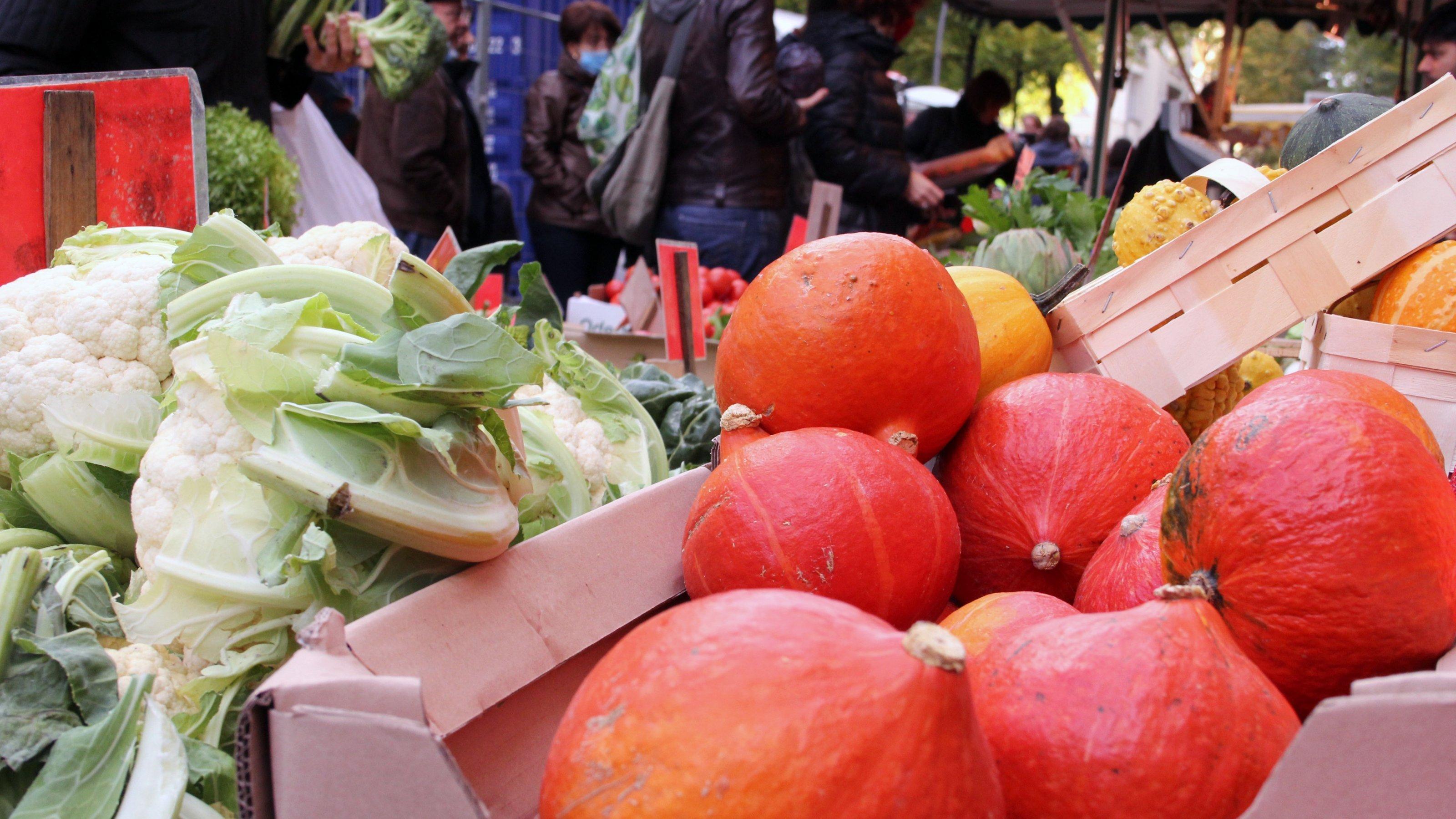 Stapel von Hokkaido-Kürbissen und Blumenkohlköpfen auf dem Markt