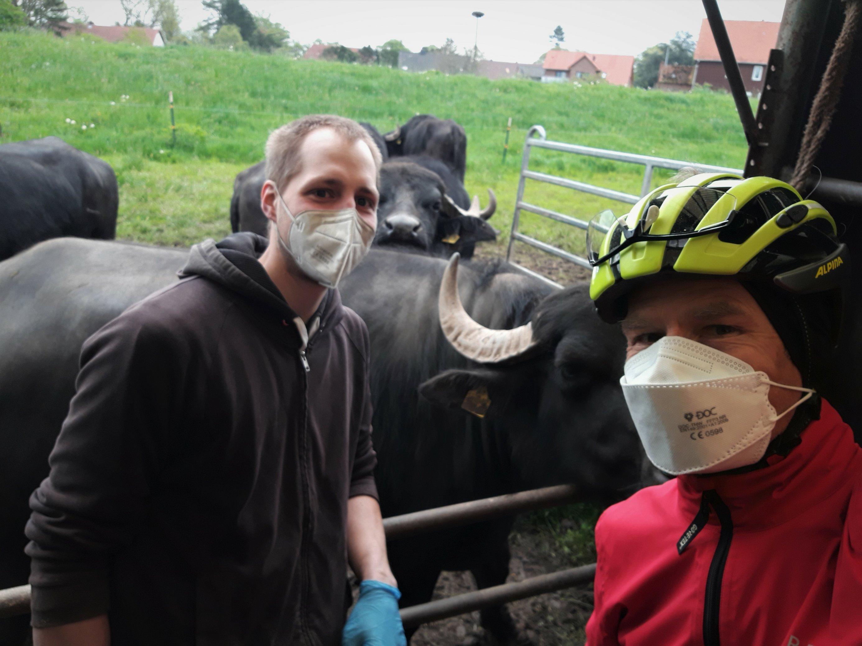 Auf dem Selfie des RadelndenReporters, der am rechten Bildrand zu sehen ist, lehnt sich der junge Landwirt ans Metallgatter, hinter dem im Bildausschnitt vier Büffel zu sehen sind.