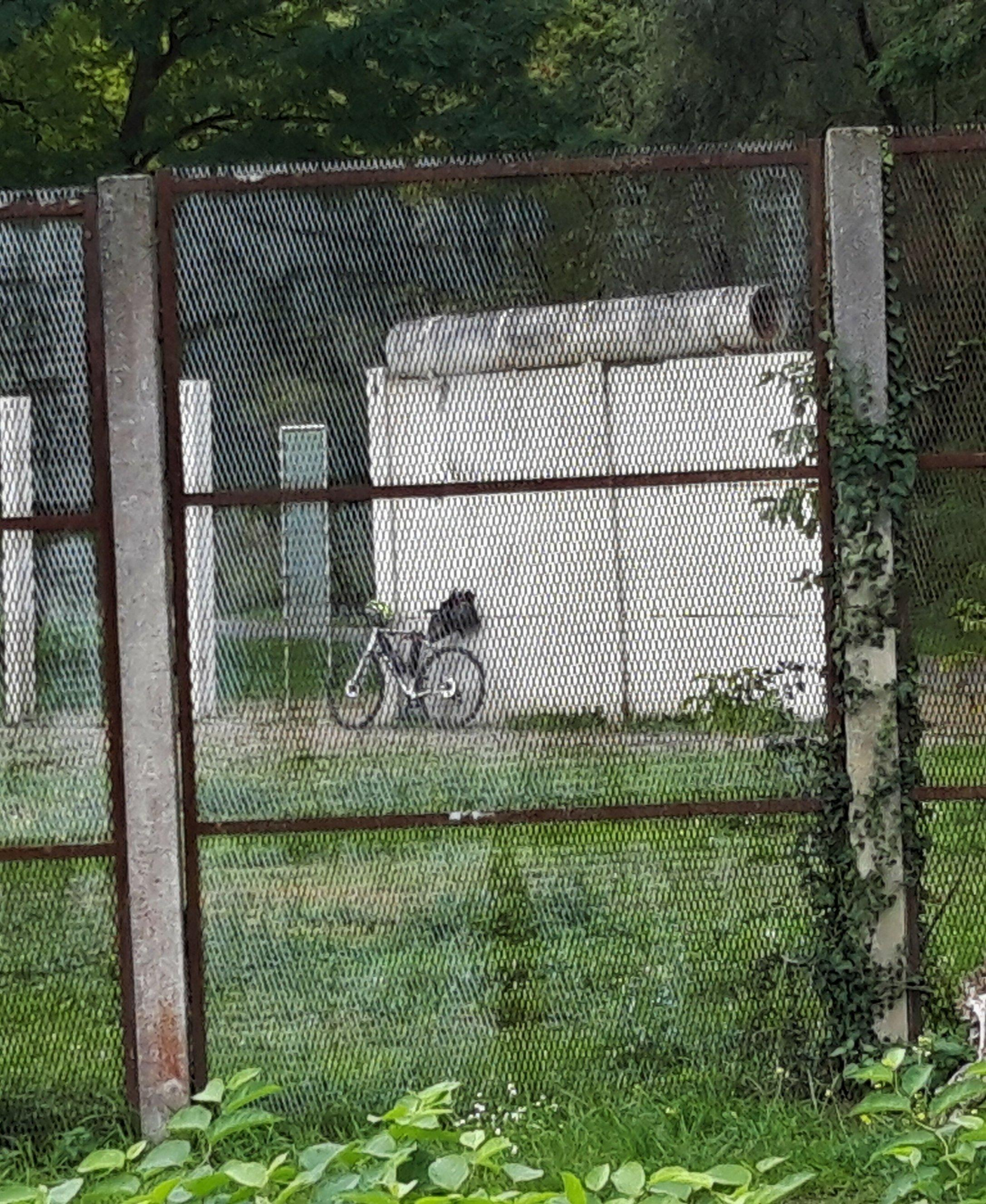 Im Hintergrund lehnt das Rad des RadelndenReporters an einem Überbleibsel der Berliner Mauer.