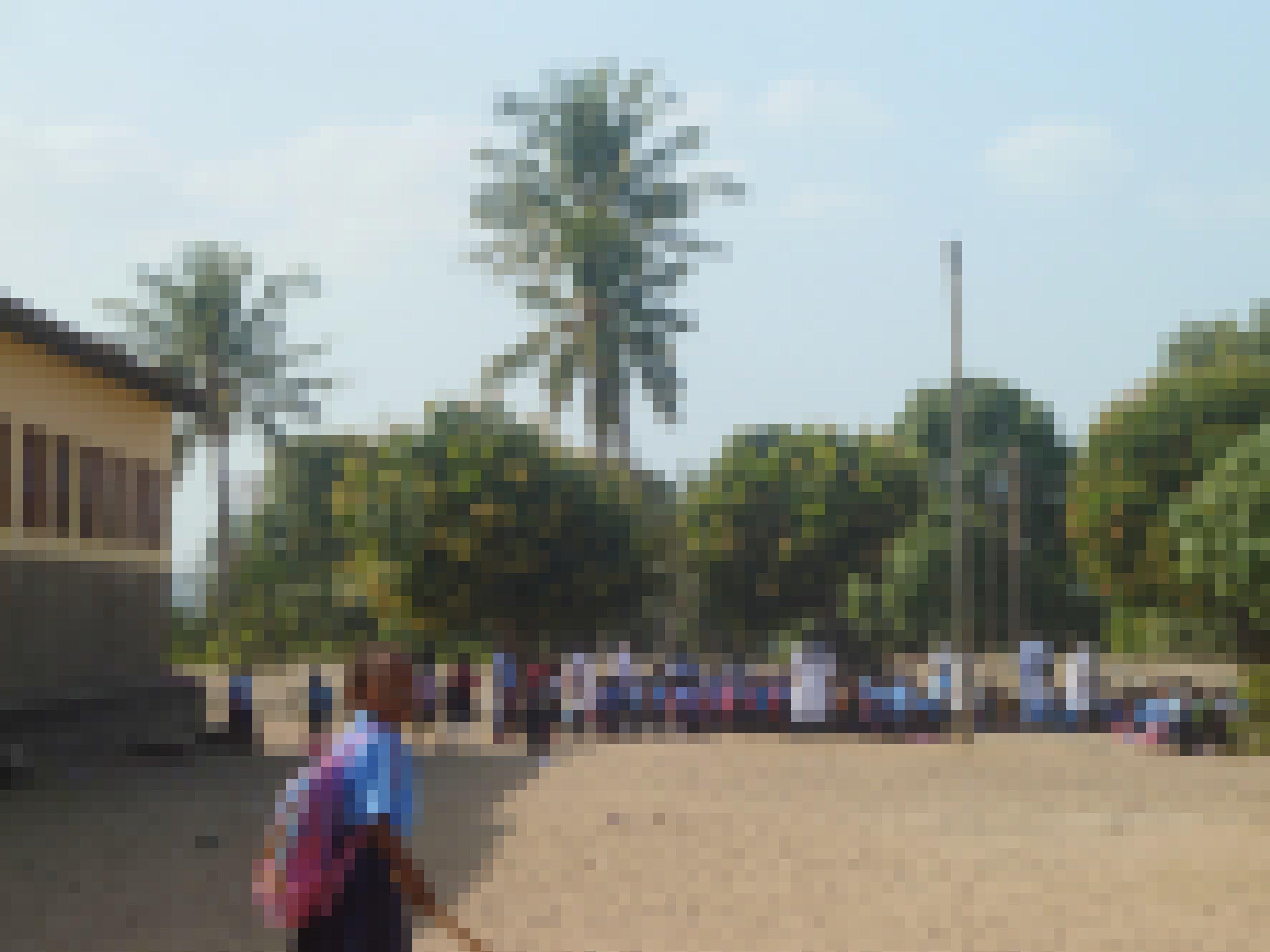 Auf dem sandigen Schulhof, unter Palmen, haben sich Schülerinnen zum Unterricht versammelt