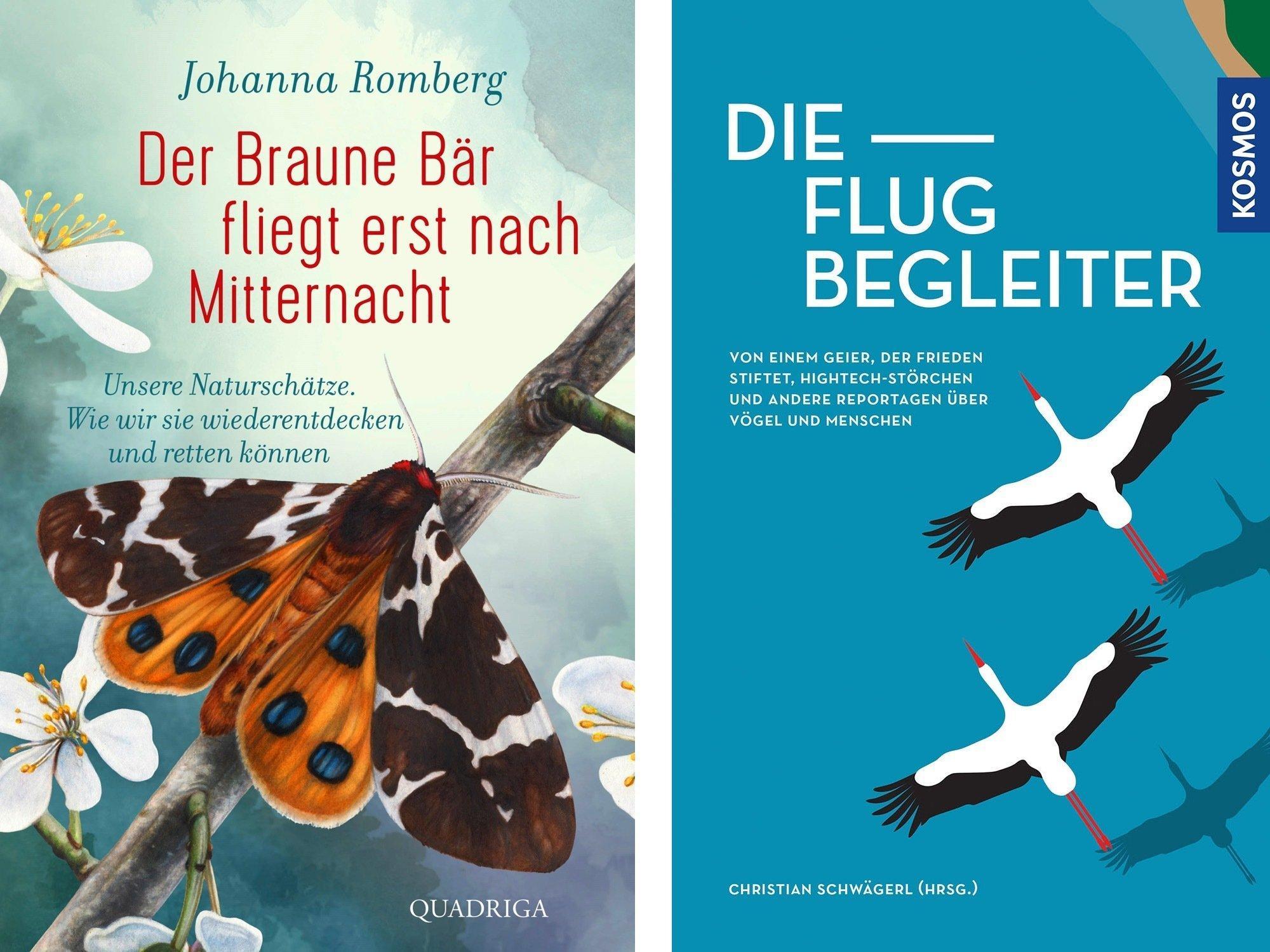 Das Bild zeigt die Cover der Bücher von Johanna Romberg (erscheint im Februar) und der Flugbegleiter (2020erschienen).
