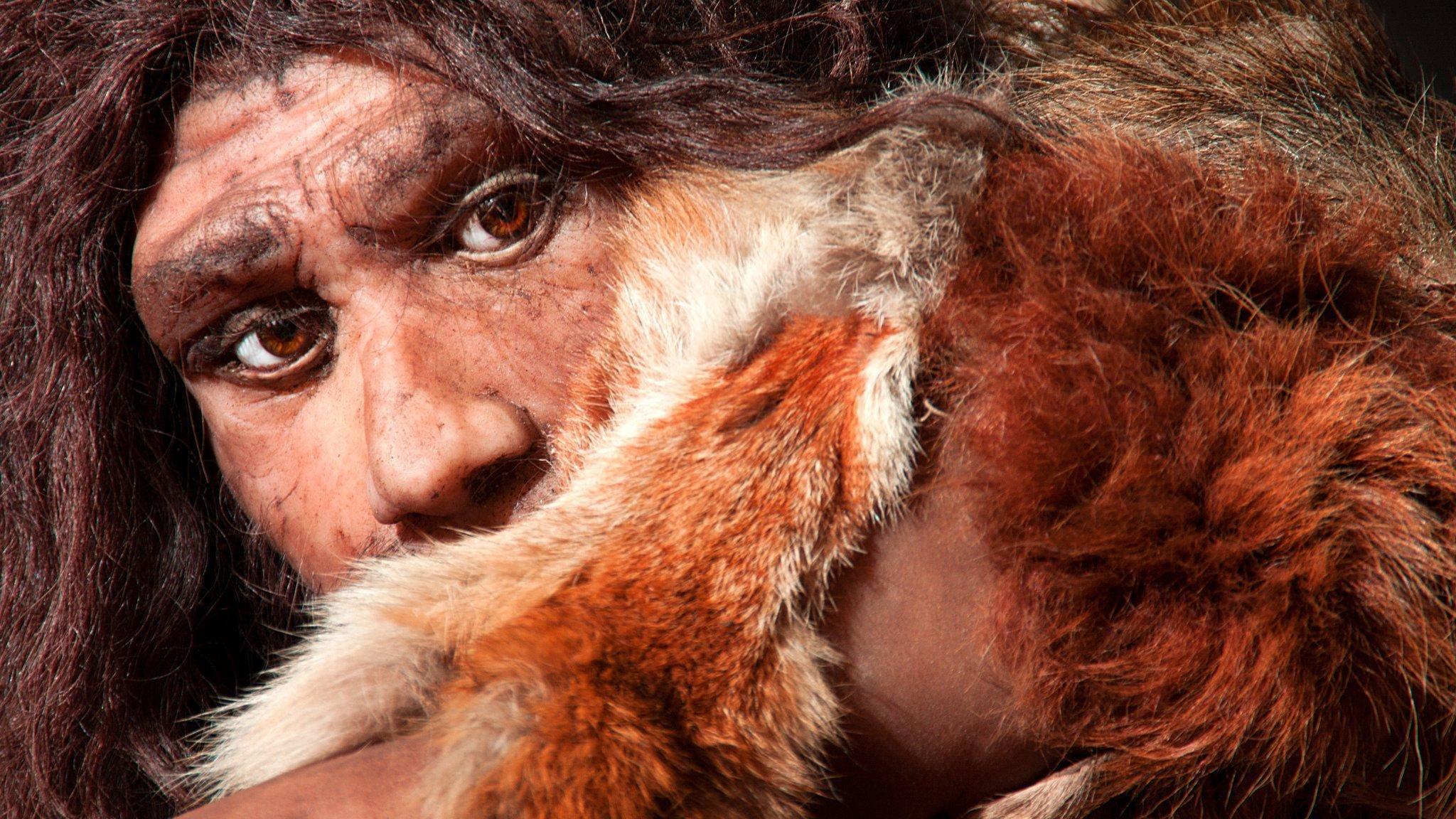 Das Bild zeigt die künstlerische Darstellung vom Gesicht eines Neandertalers mit braunen Augen und dichten, dunklen Haaren. Sein Arm ist zum Teil von einem flauschigen, weiß-braunen, auf der Schulter ruhenden Fell bedeckt. Er hält ihn schräg vor sich, so dass seine Mundpartie verdeckt ist – als ob er sich vor etwas schützen wolle. Vor vermutlich 60.000Jahren haben sich Homo sapiens-Leute mit Neandertalern vermischt. Einige vom Neandertaler übernommene Gene halfen bei der Anpassung und beeinflussen bis heute unser Aussehen und unsere Anfälligkeit für manche Krankheiten.