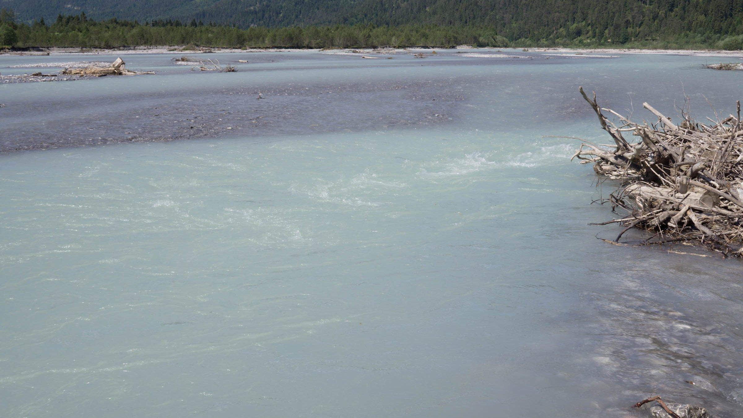 Ein türkisfarbener Gebirgsfluss mit Schotterbänken, rechts vorne ein Haufen Totholz.