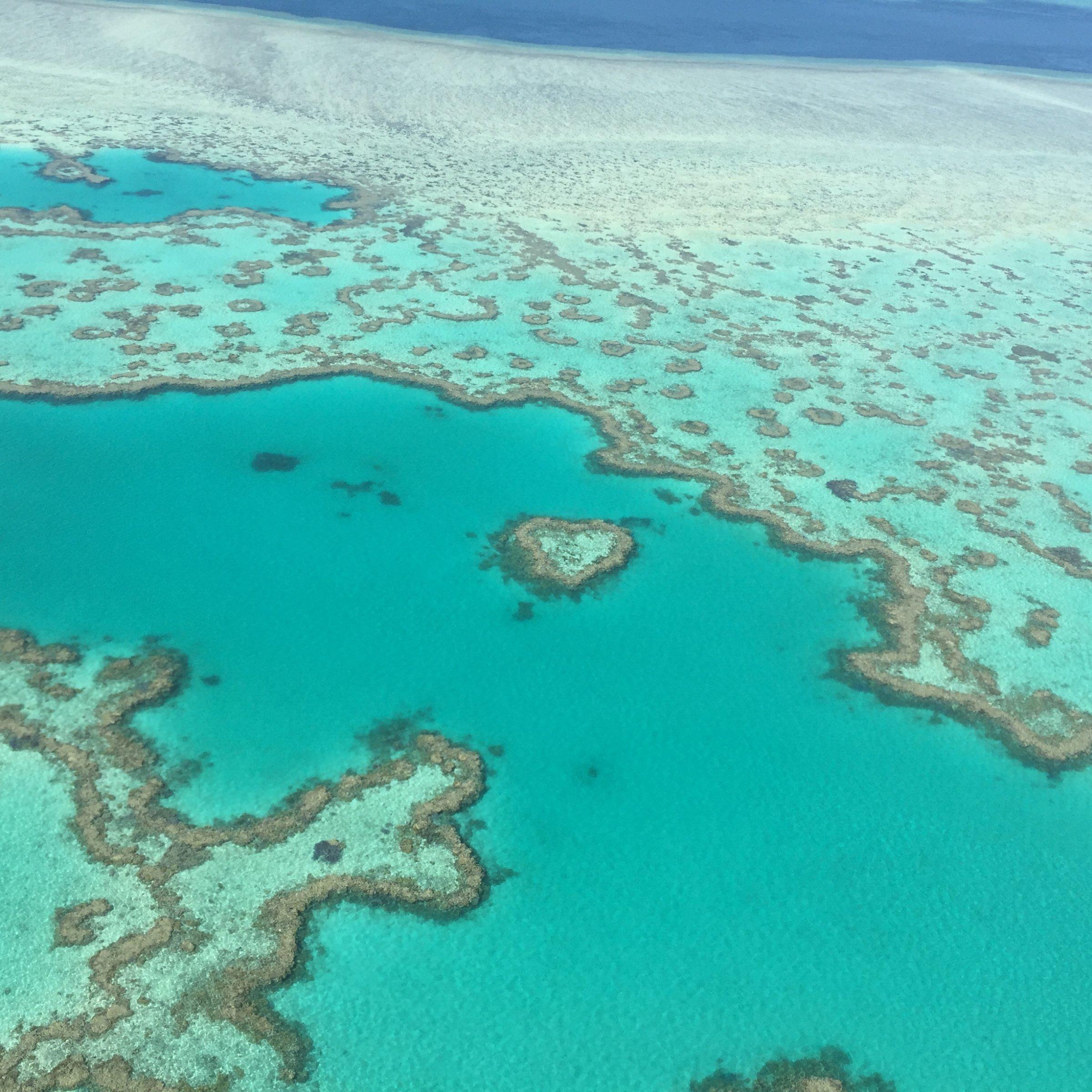 Foto zeigt ein Luftbild auf Riffe des Great Barrier Reef Marine Parks vor Australien